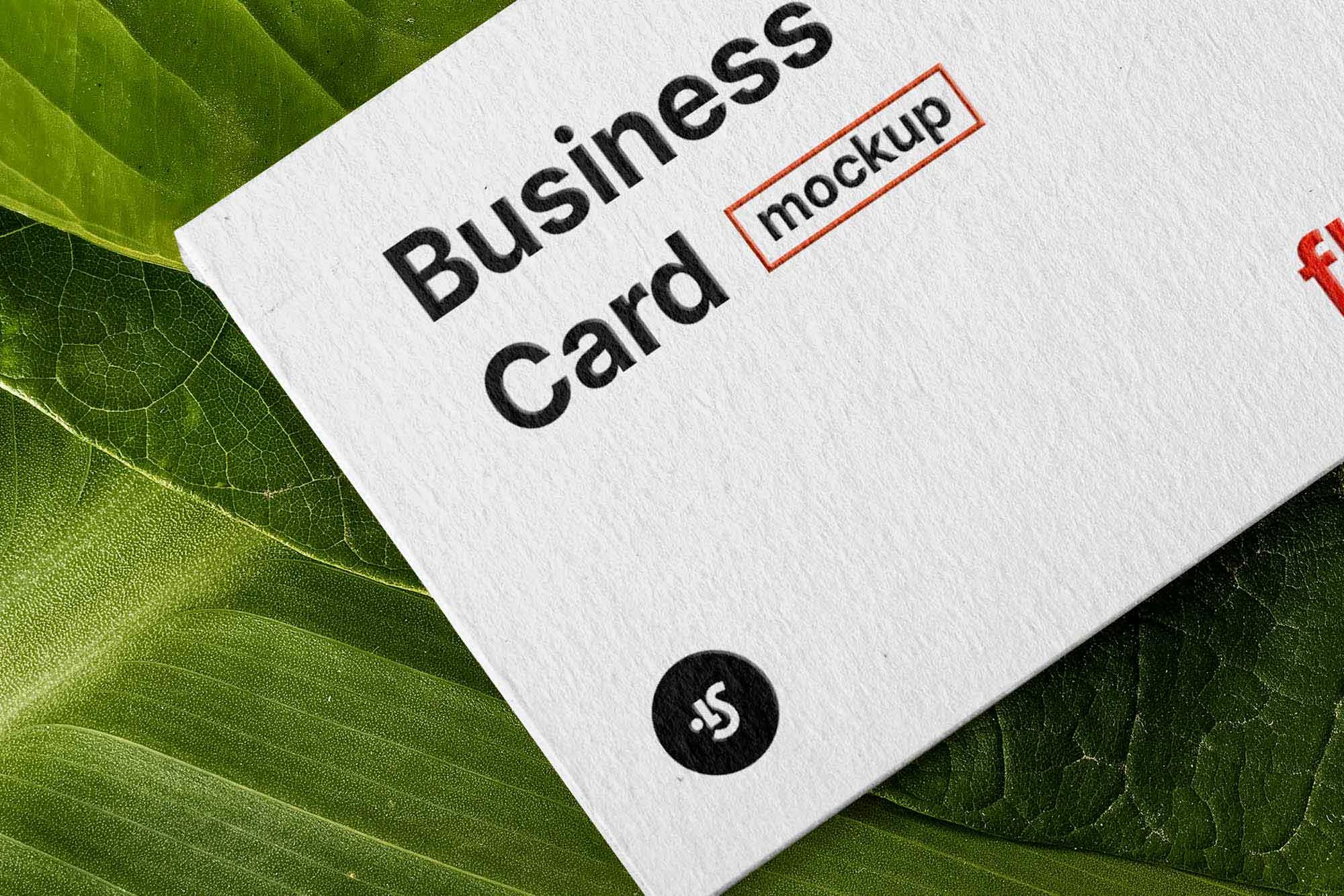 Floral Business Card Mockup 2
