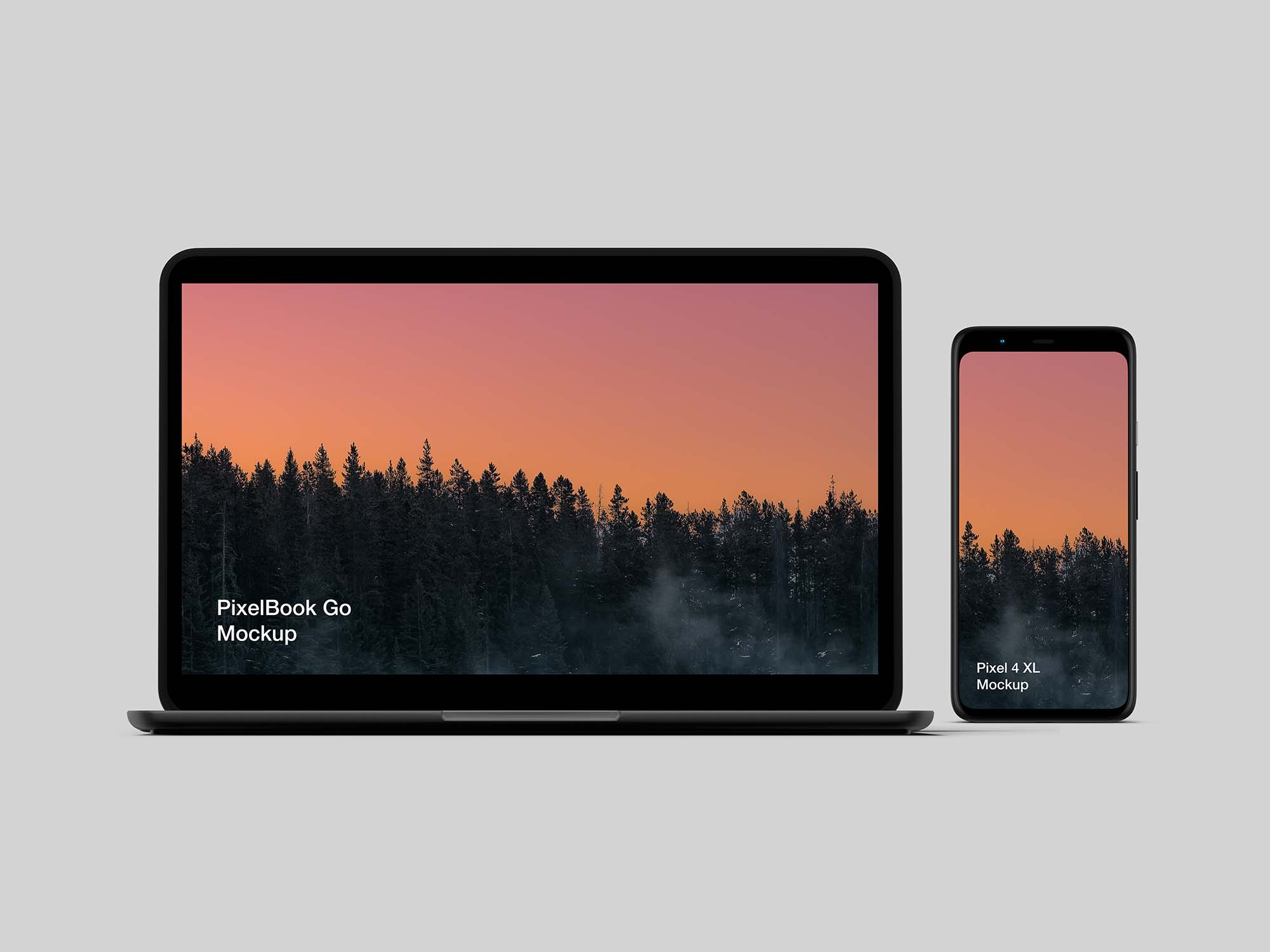 Pixel 4 and PixelBook Go Mockup
