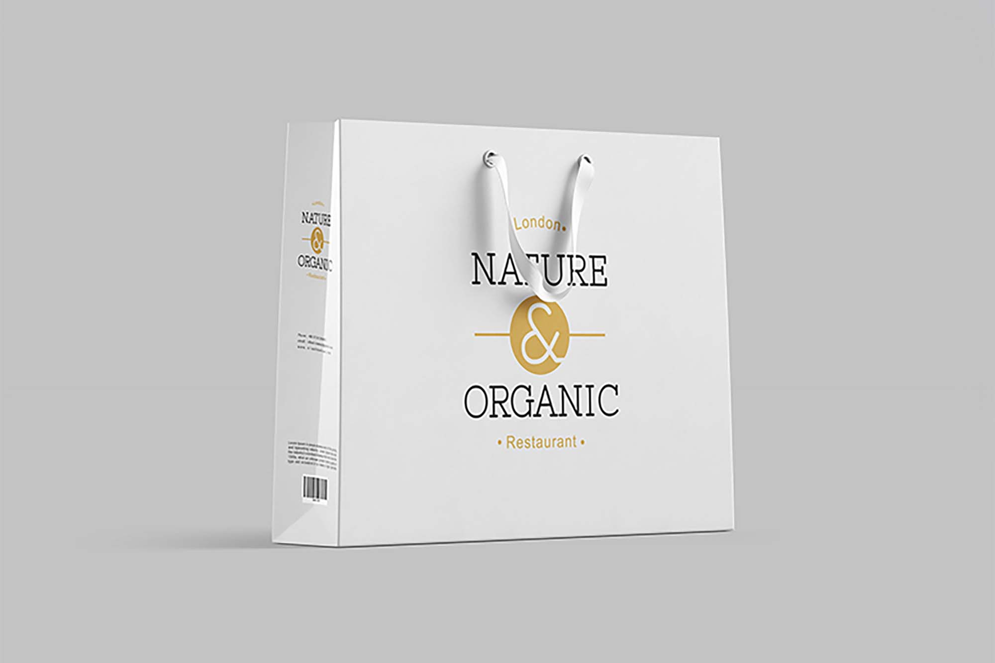 Paper Shopping Bag Mockup 2