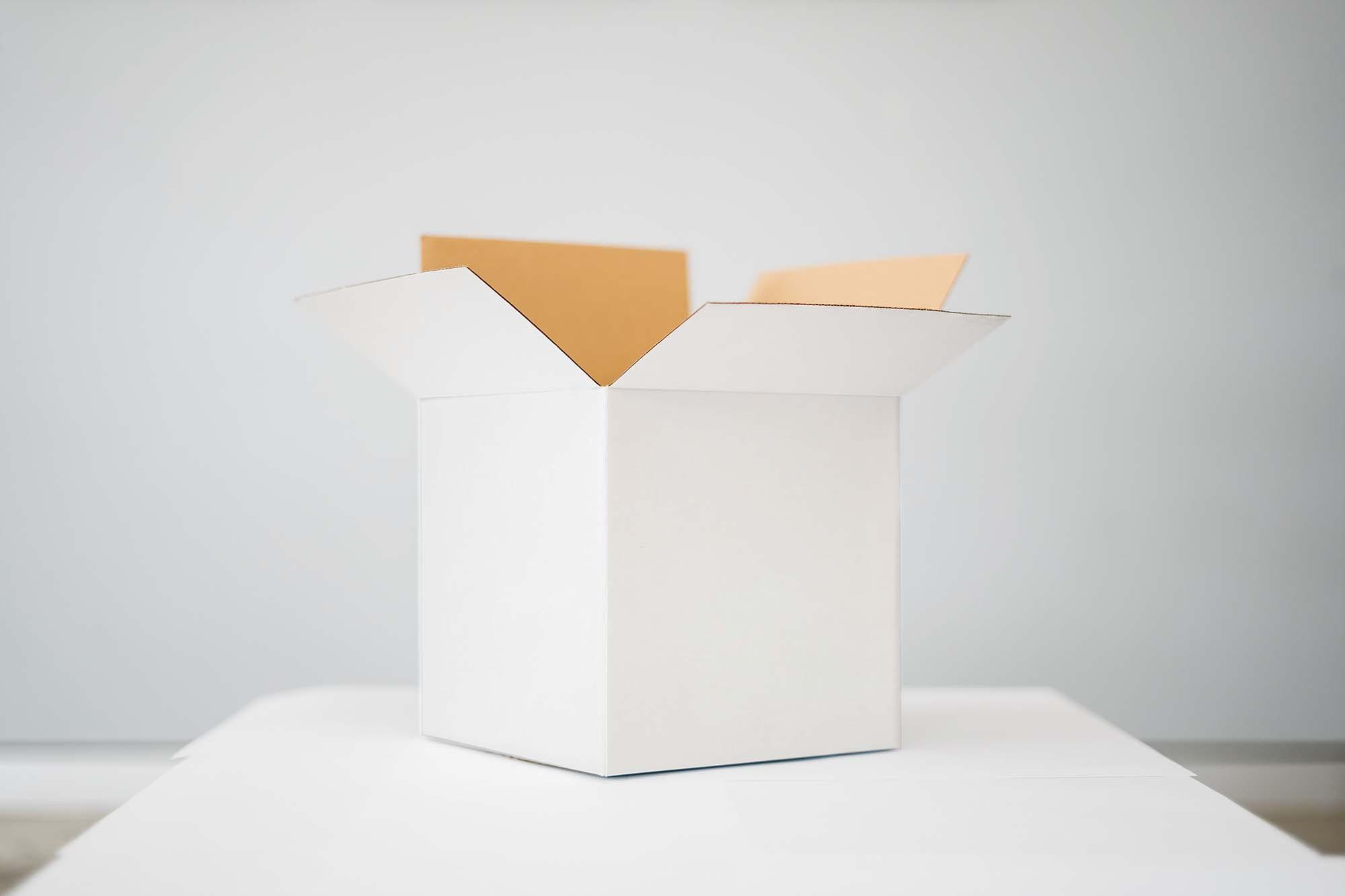 Perspective Box Mockup 2