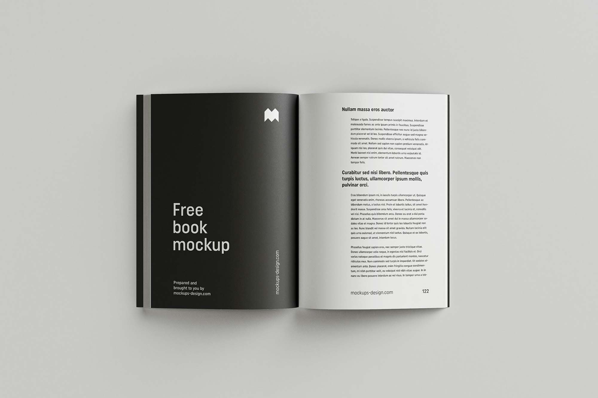 Softcover Book Mockup 6