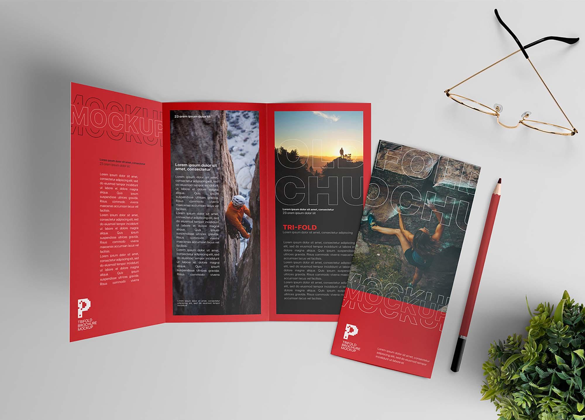 Trifold Brochure Mockup Scene