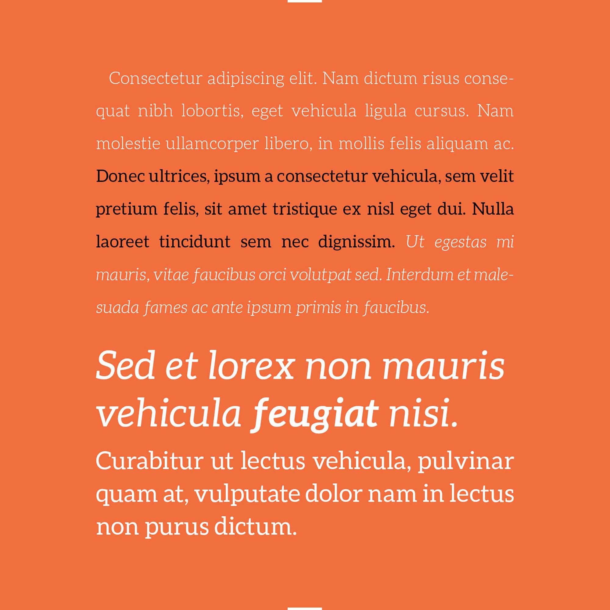 Aleo Slab Serif Font 3