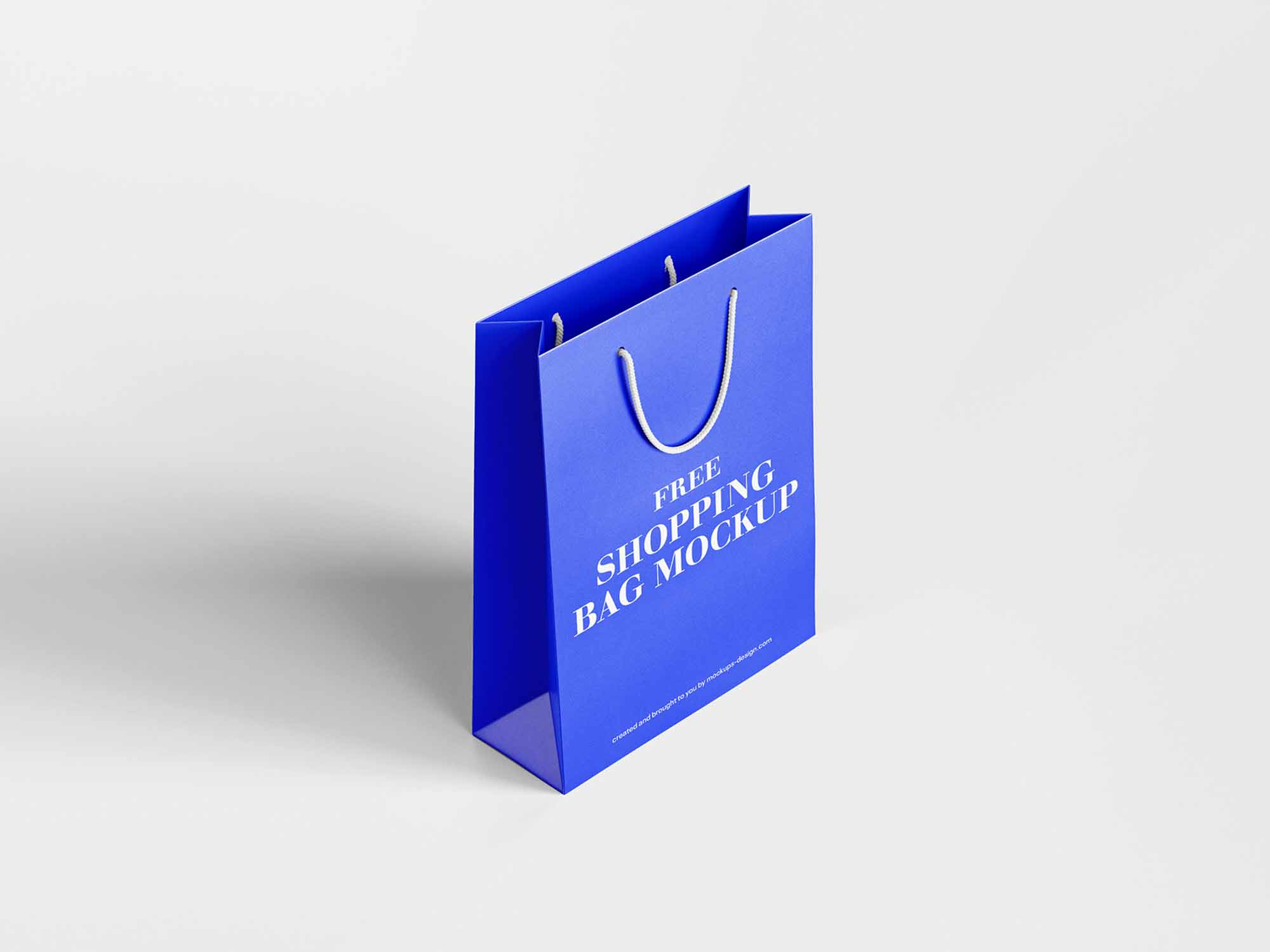 Shopping Bag Mockup 4