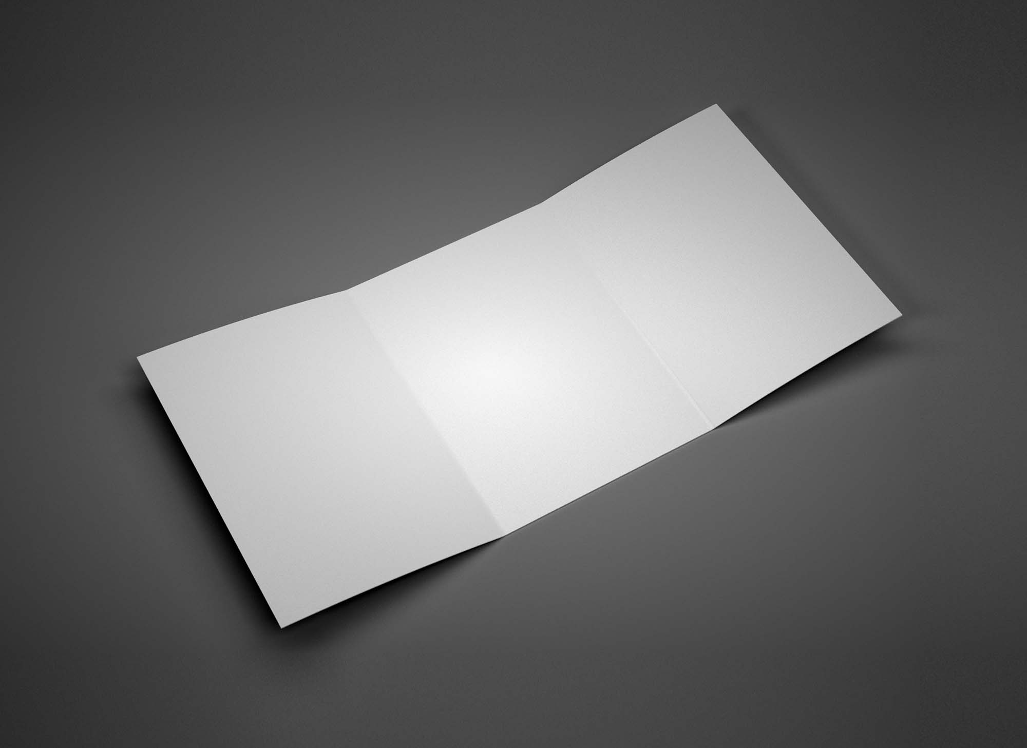 A4 Perspective Trifold Brochure Mockup 2