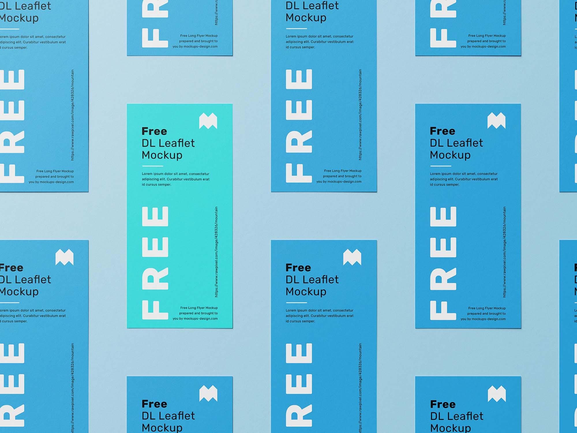 DL Leaflet Grid Mockup 3