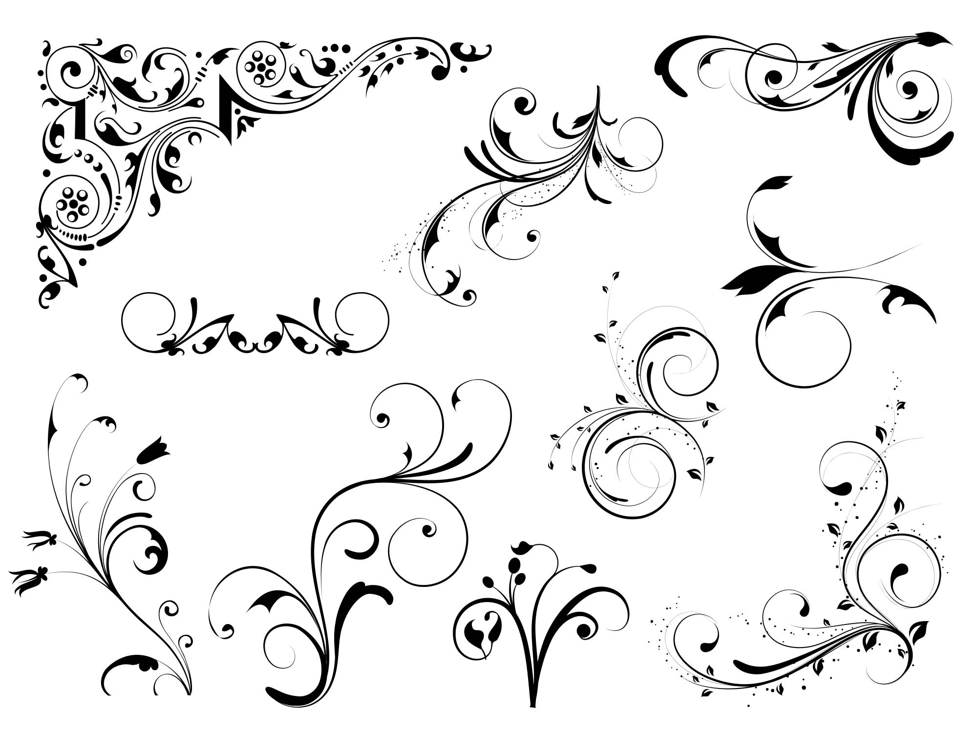 Floral Vector Design Elements 2