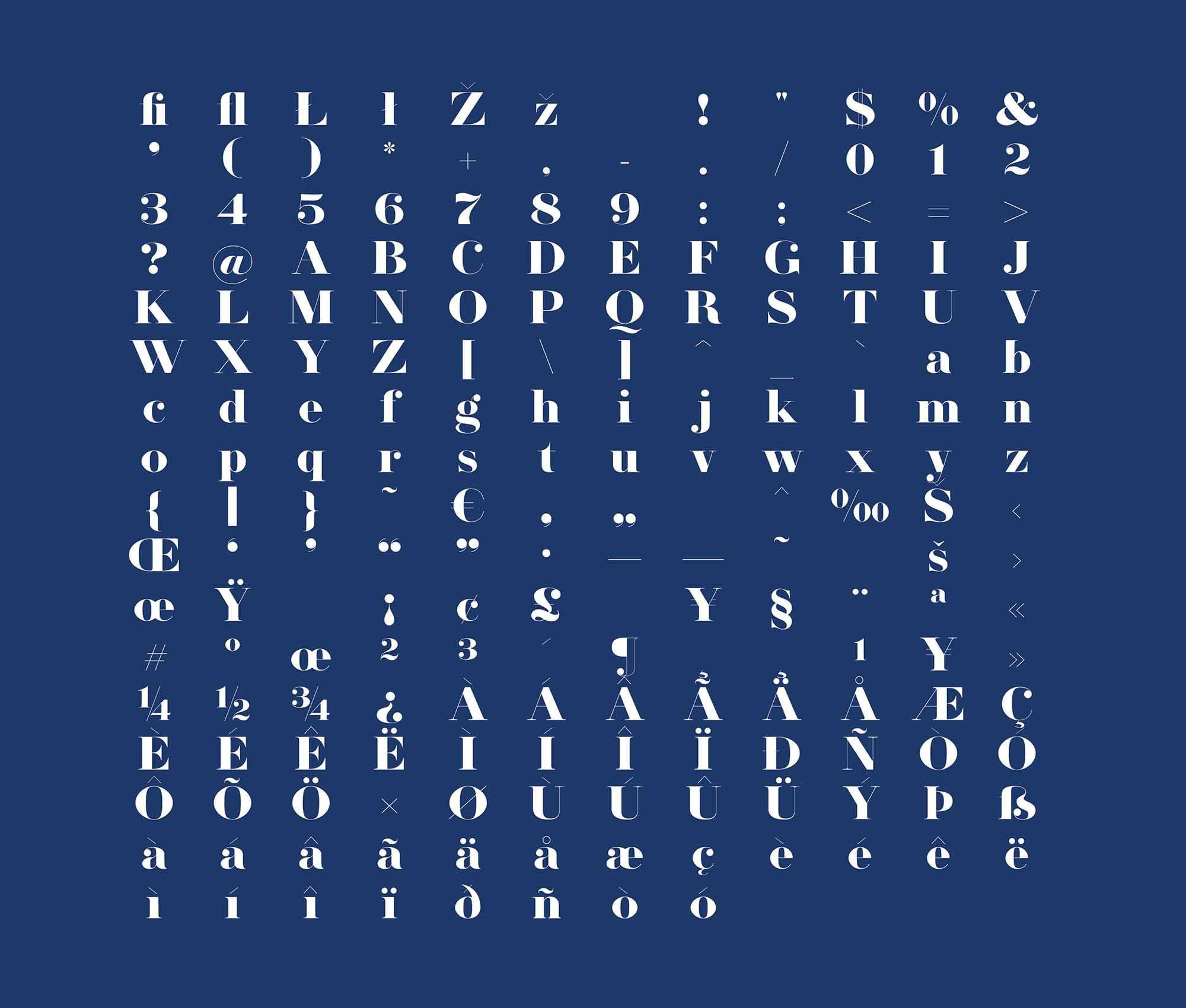 Herbert Serif Font 3