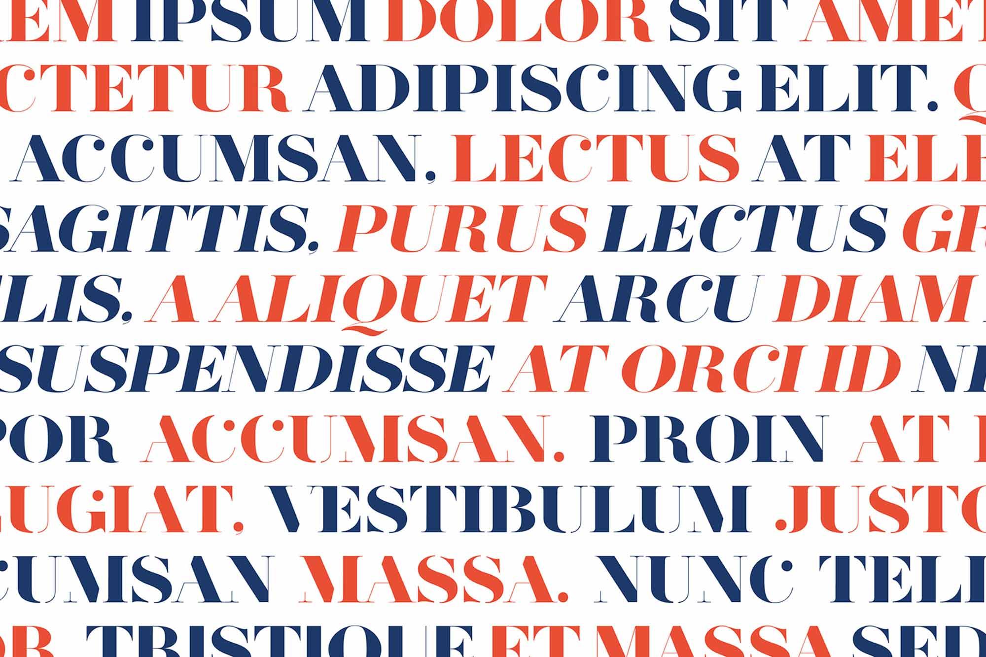 Herbert Serif Font 5
