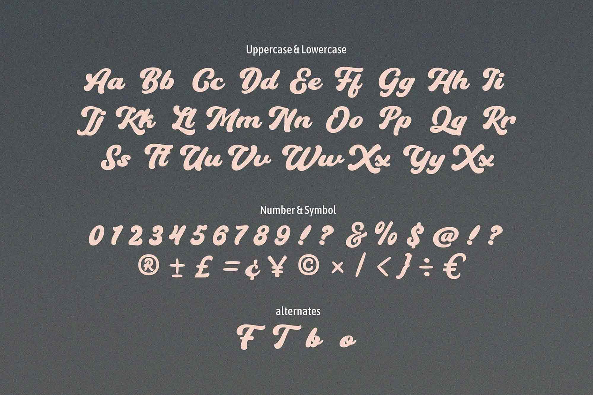 Hundrea Script Font 3