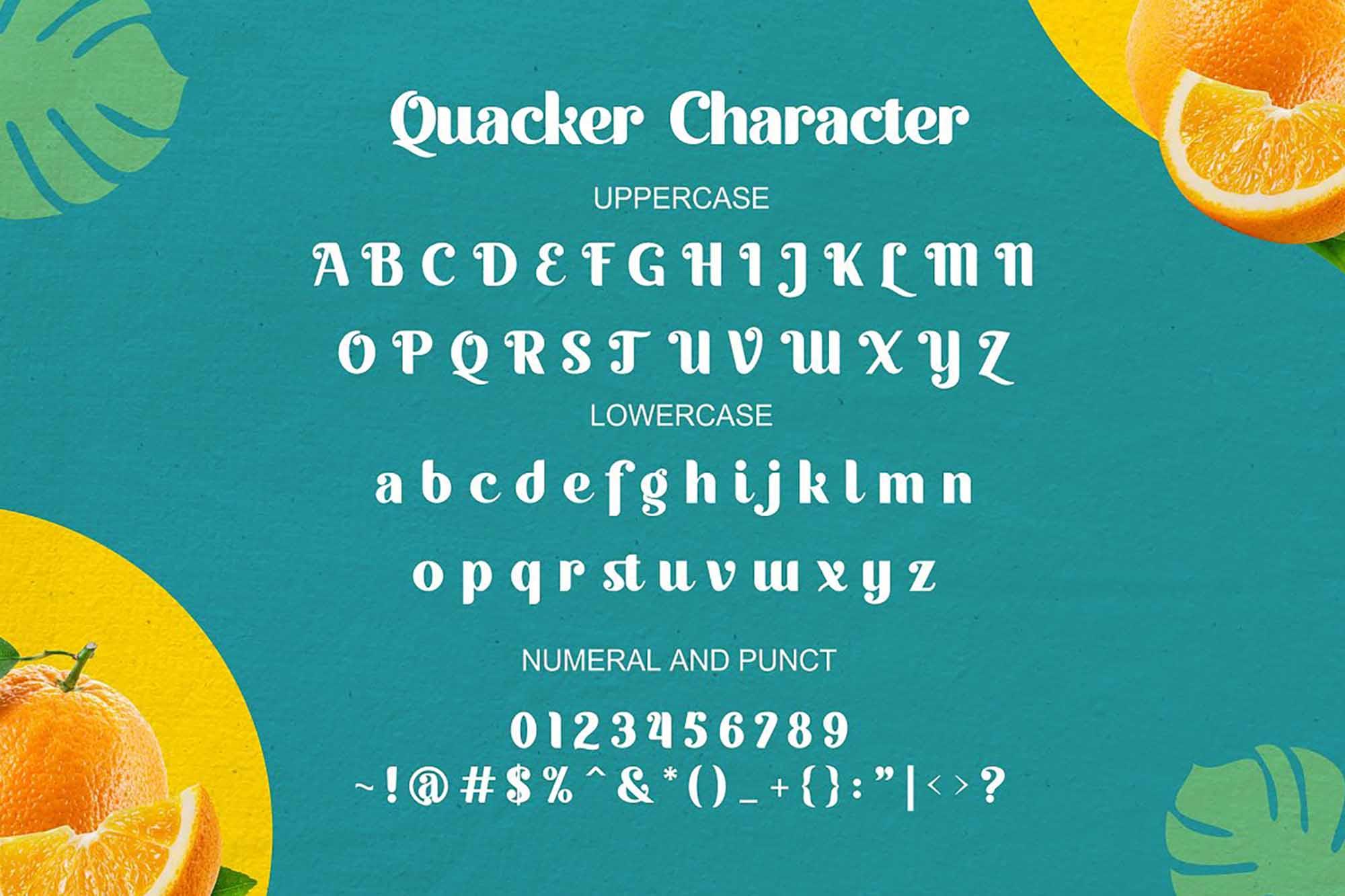 Quacker Sans Serif Font 6