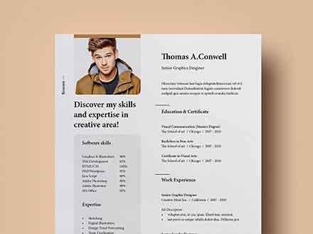 Resume Template Vol 8