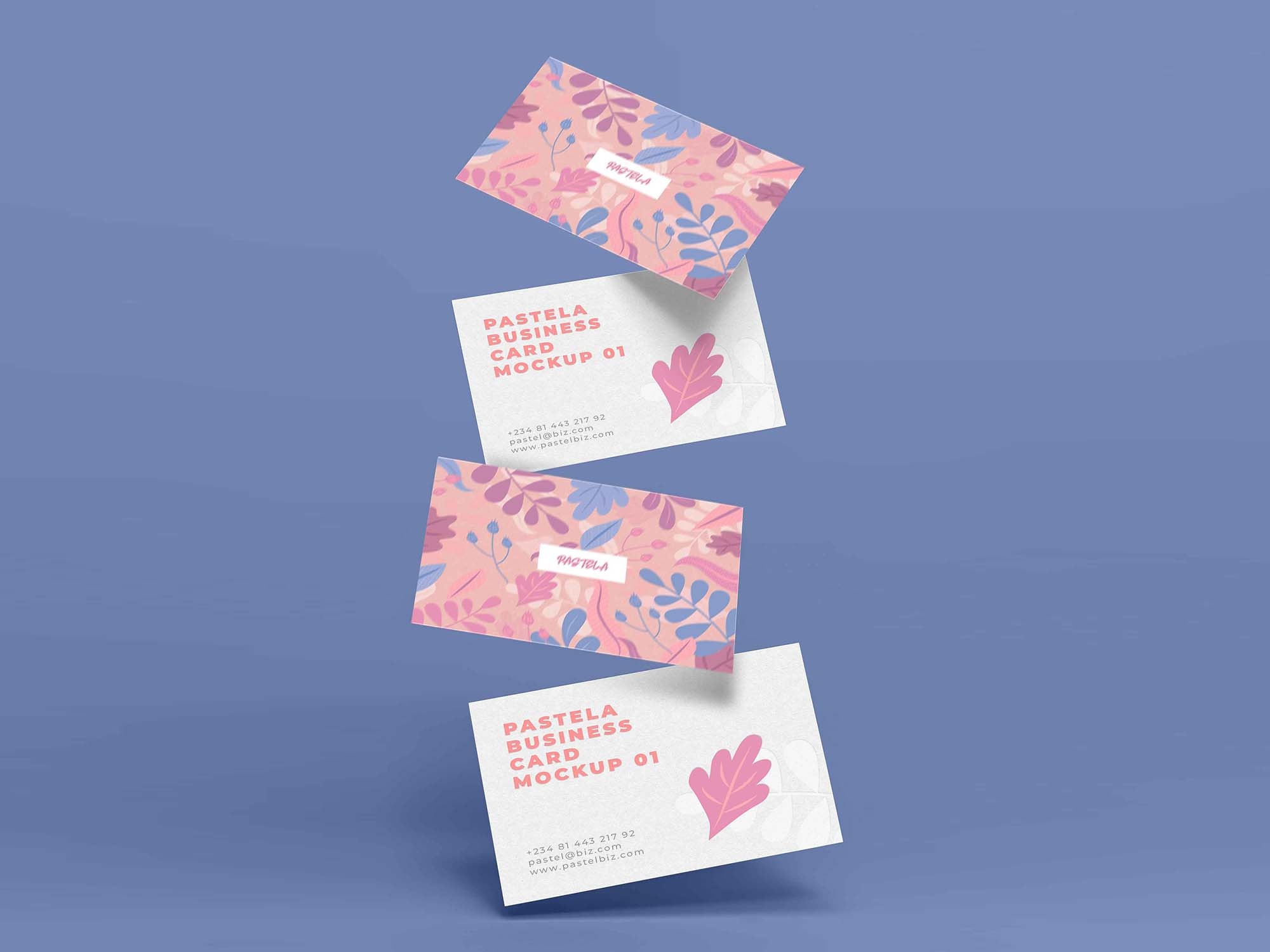 Business Card Mockup 13