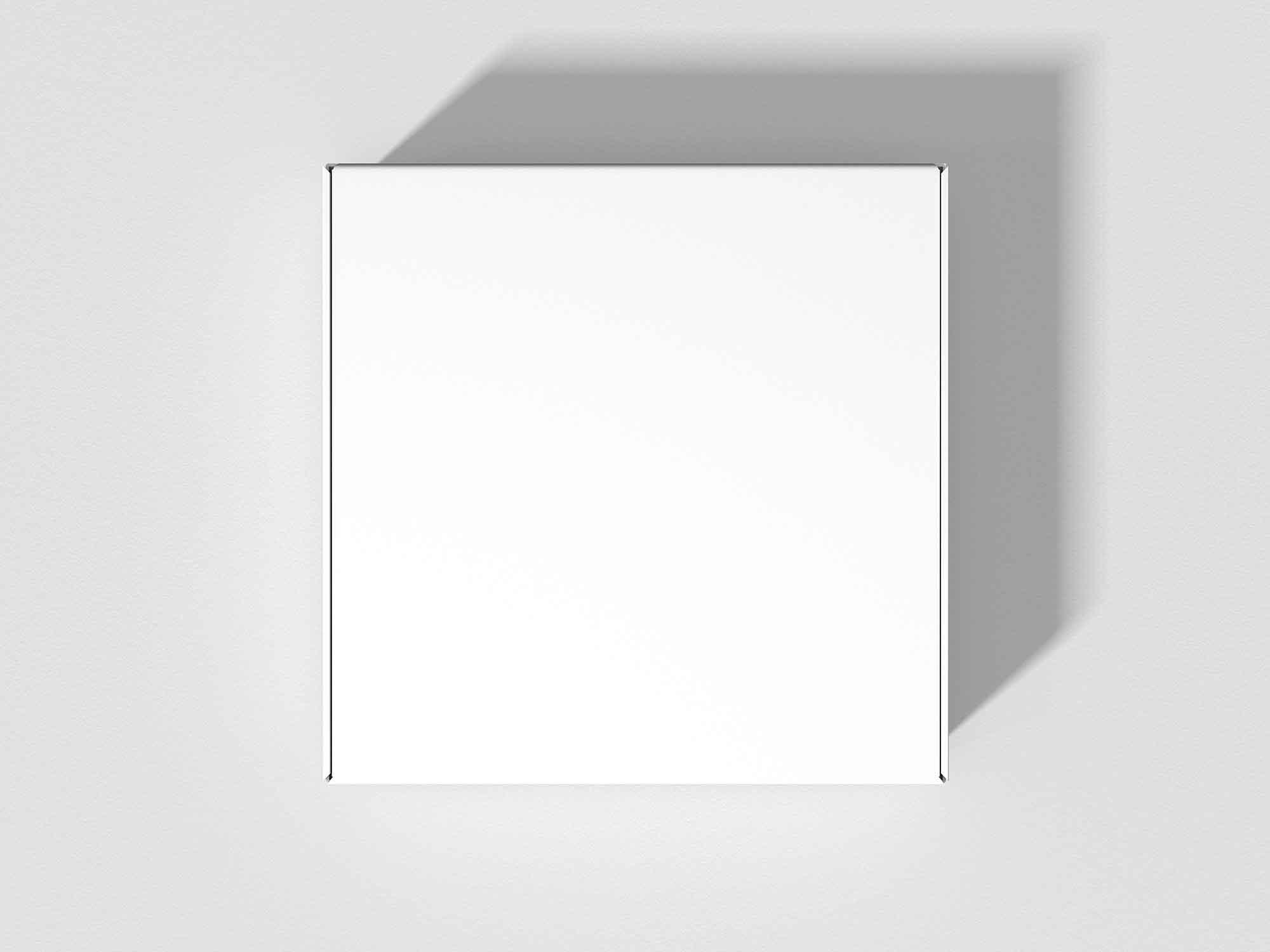 Mailer Box Mockup 2