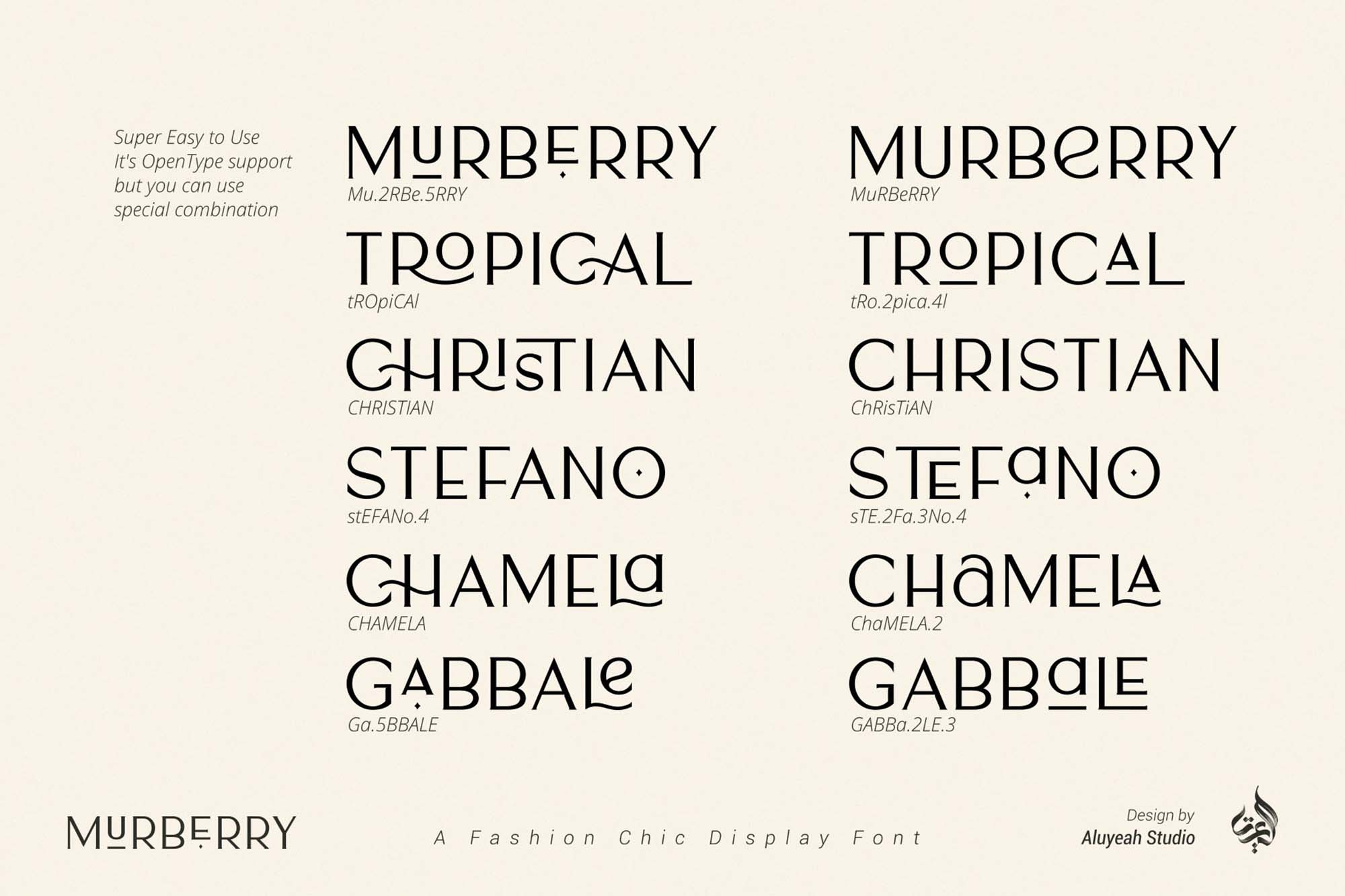 Murberry Fashion Font 7