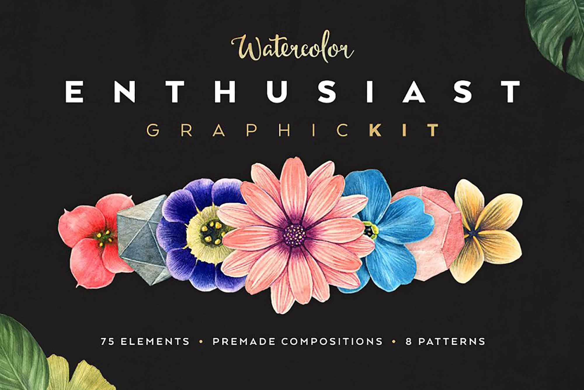 Watercolor Enthusiast Graphic