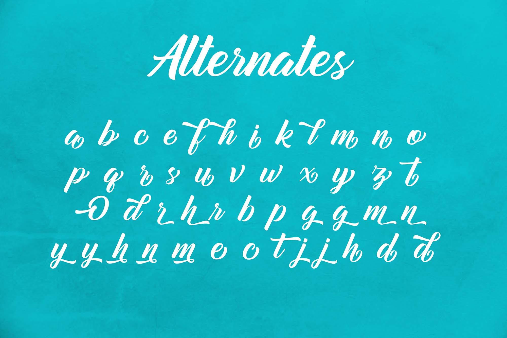 Mountain Bridge Script Font 4