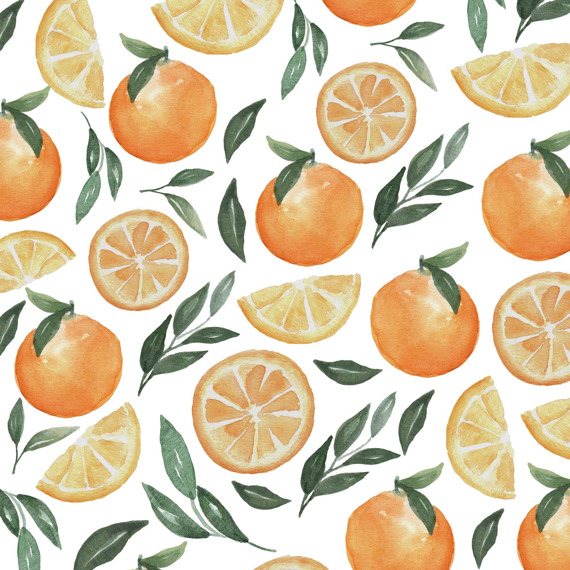 Orange Fruit Watercolor Clipart Patterns