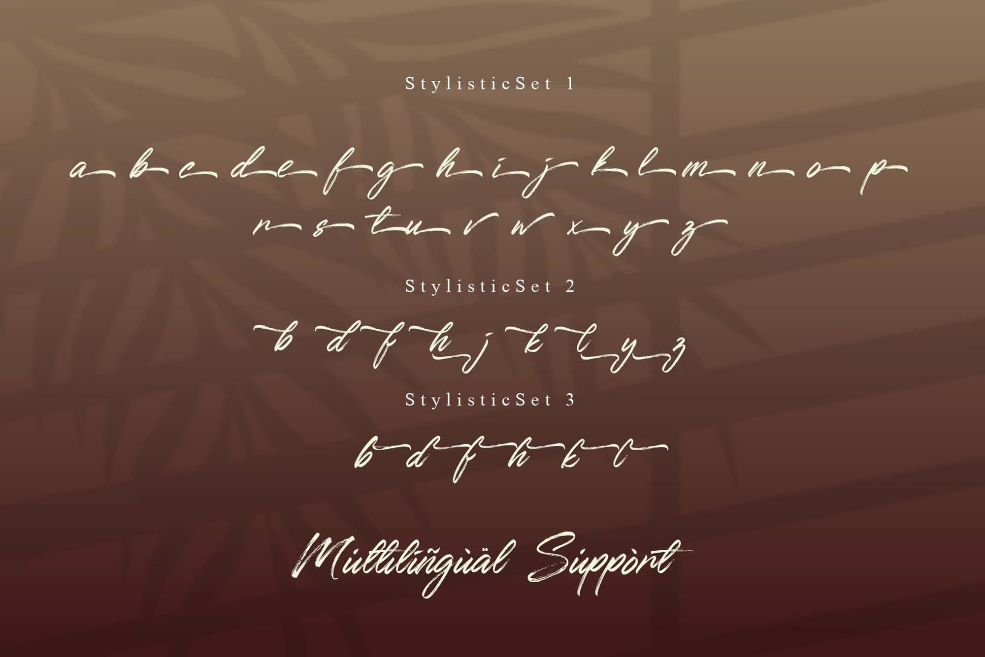 Qillsey Einstein Font 6