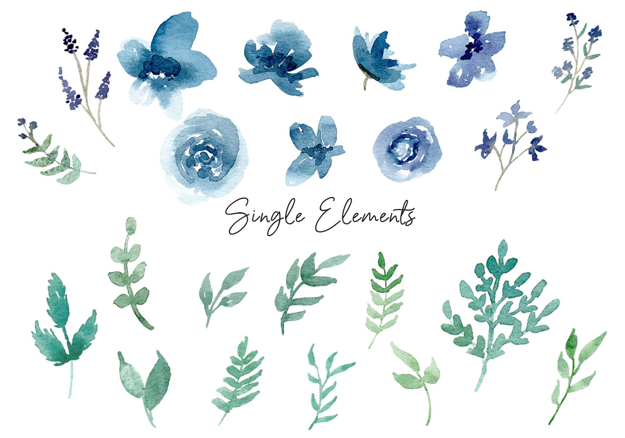 Floral Watercolor Design Elements 3
