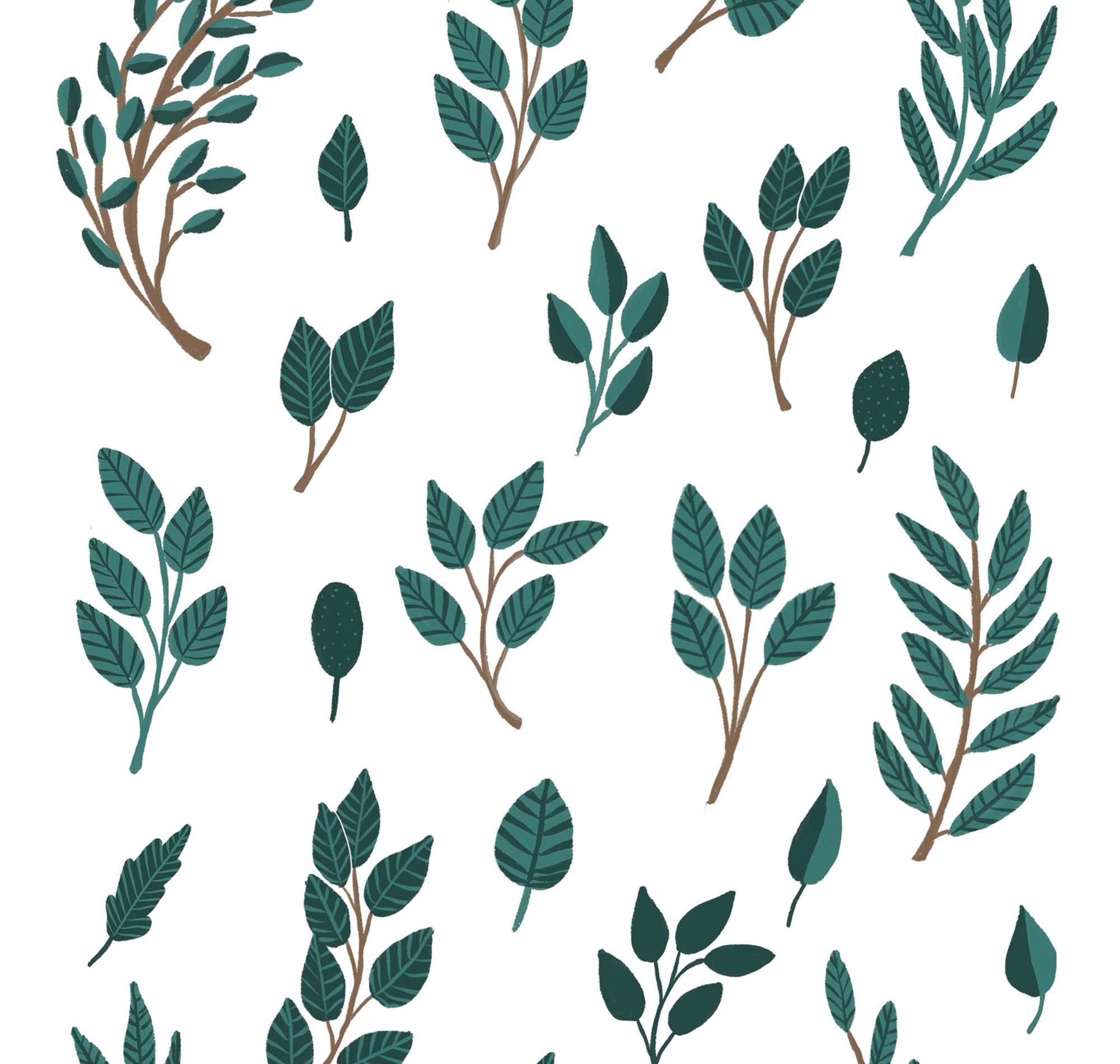 Lillia Floral Illustrations 1
