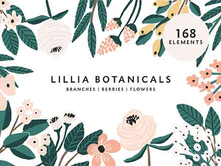 Lillia Floral Illustrations