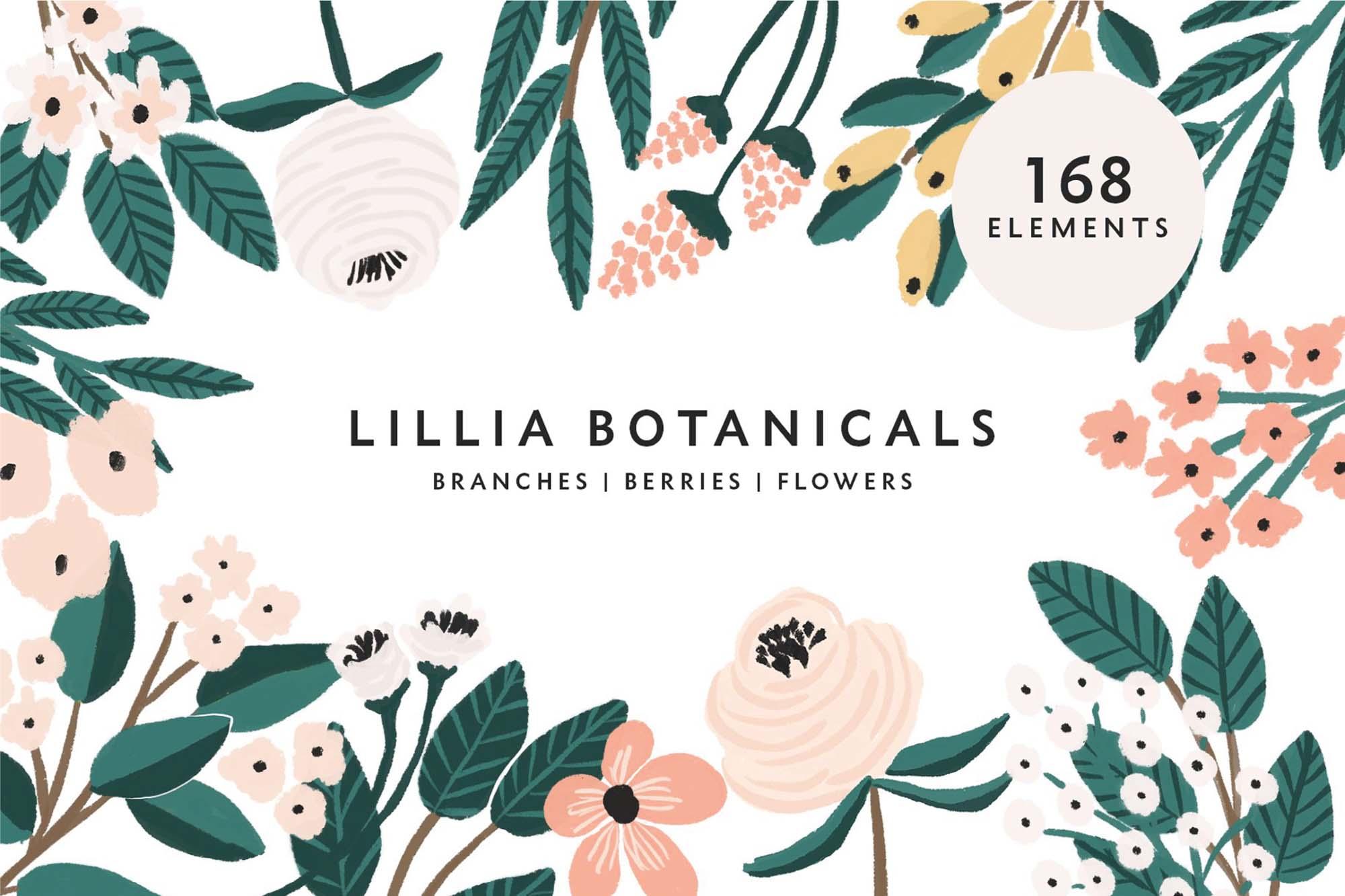 Lillia Floral Illustrations