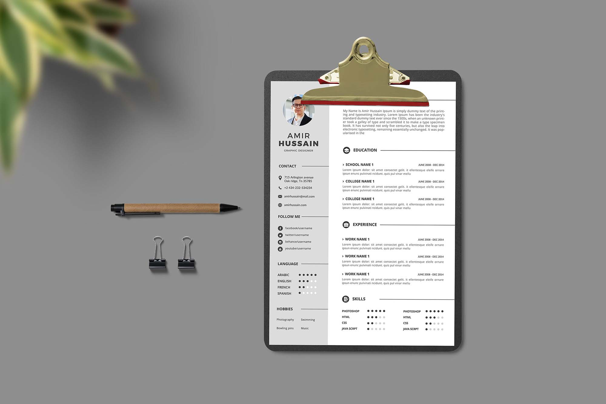 Professional Resume Template 4