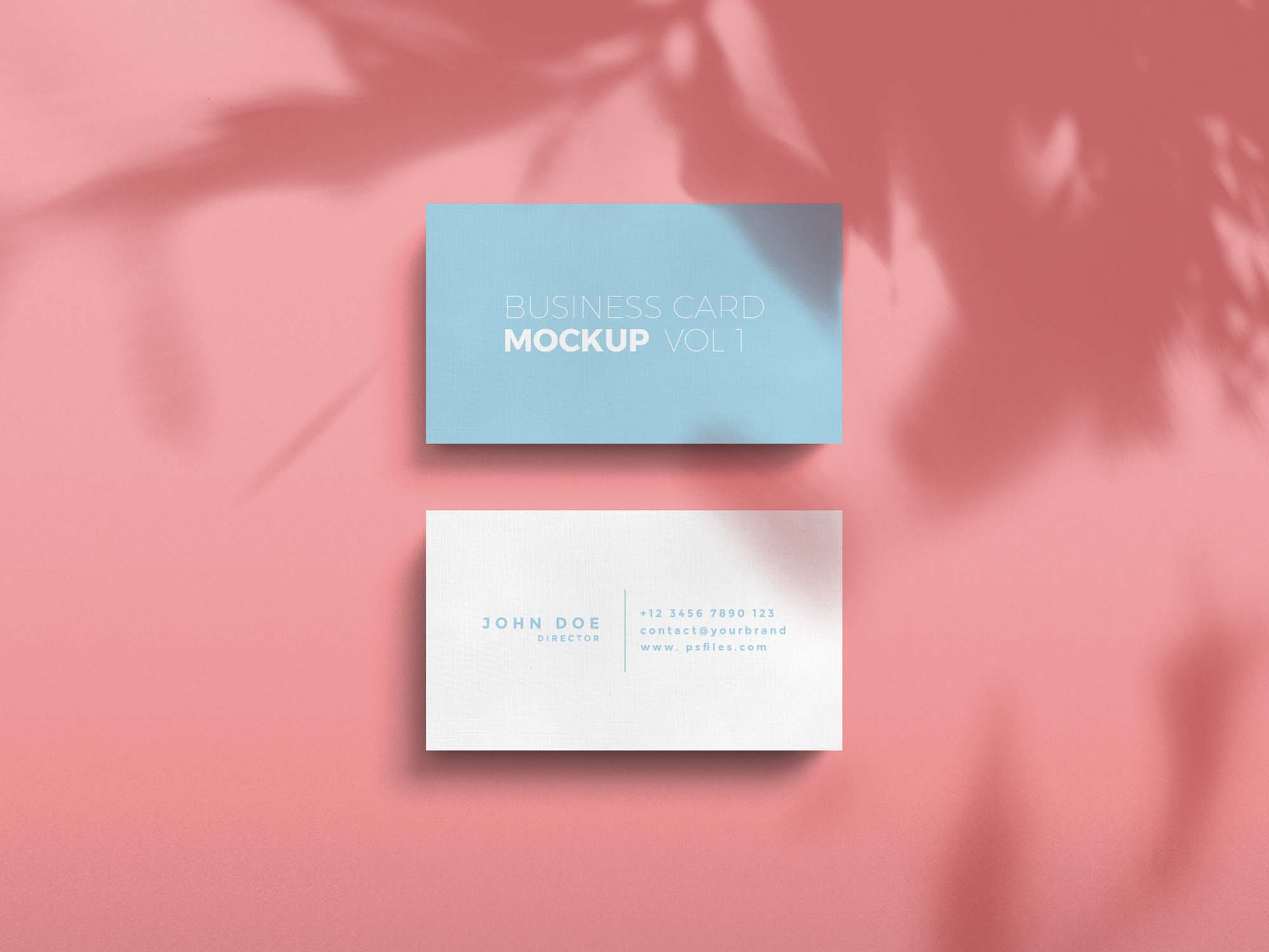 Standard Business Card Mockup