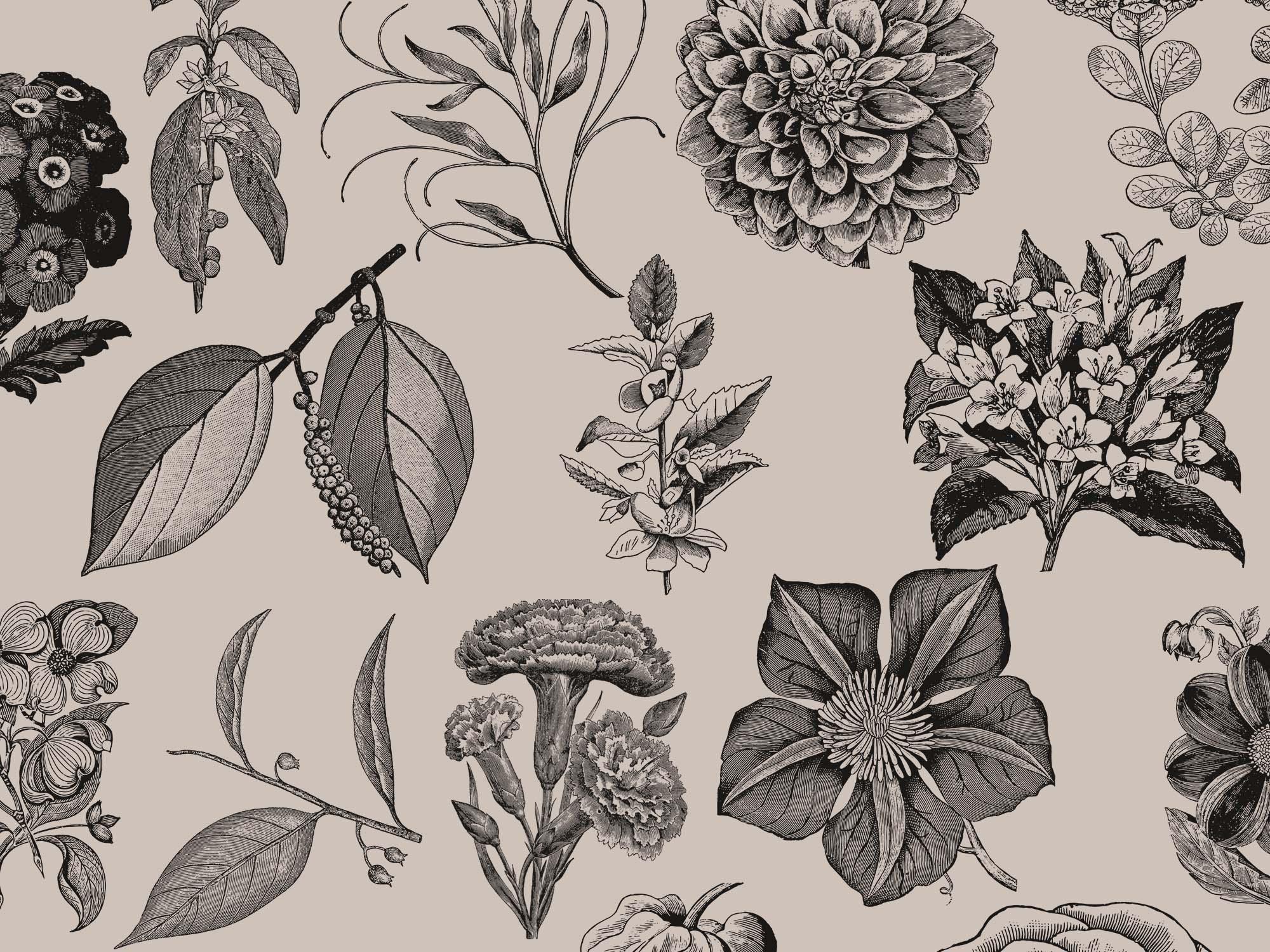 Vintage Flower Graphics