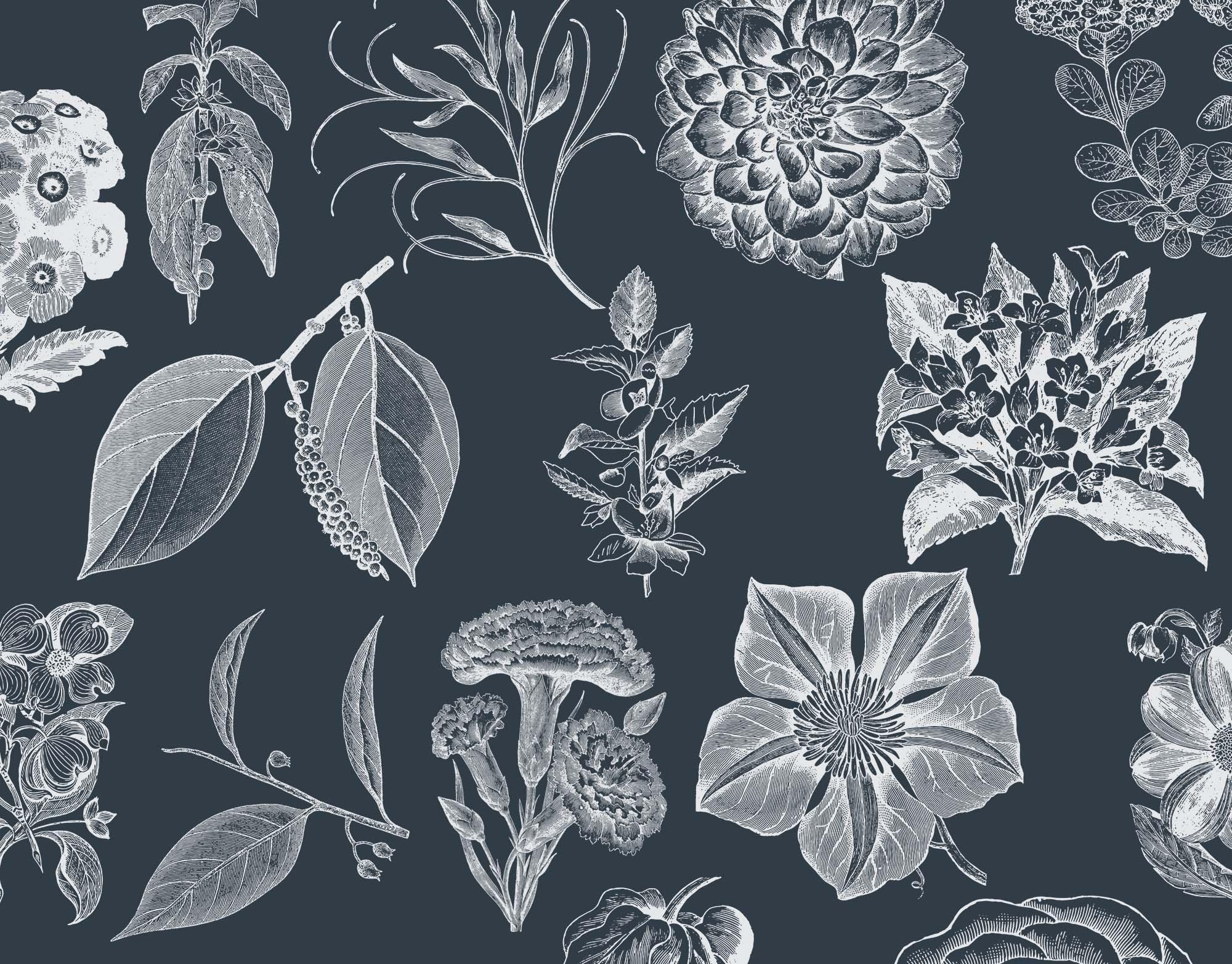 Vintage Flower Graphics 2