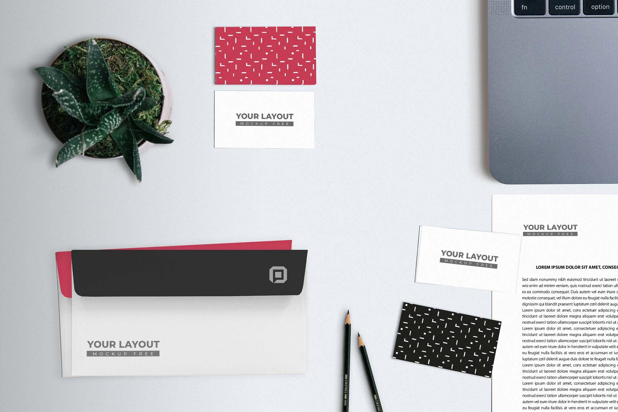 Basic Branding Mockup 2
