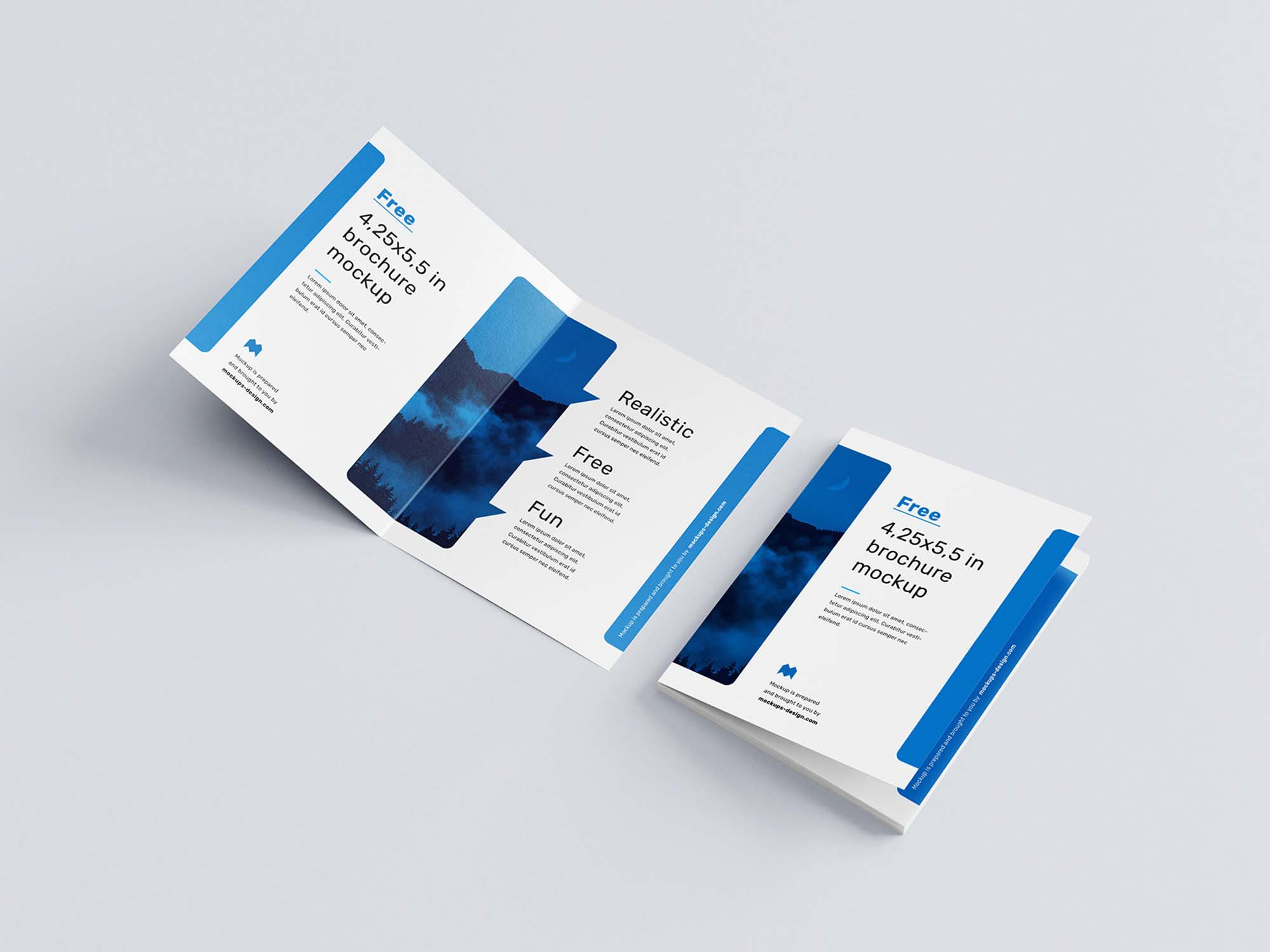 US Format Bifold Brochure Mockup 2