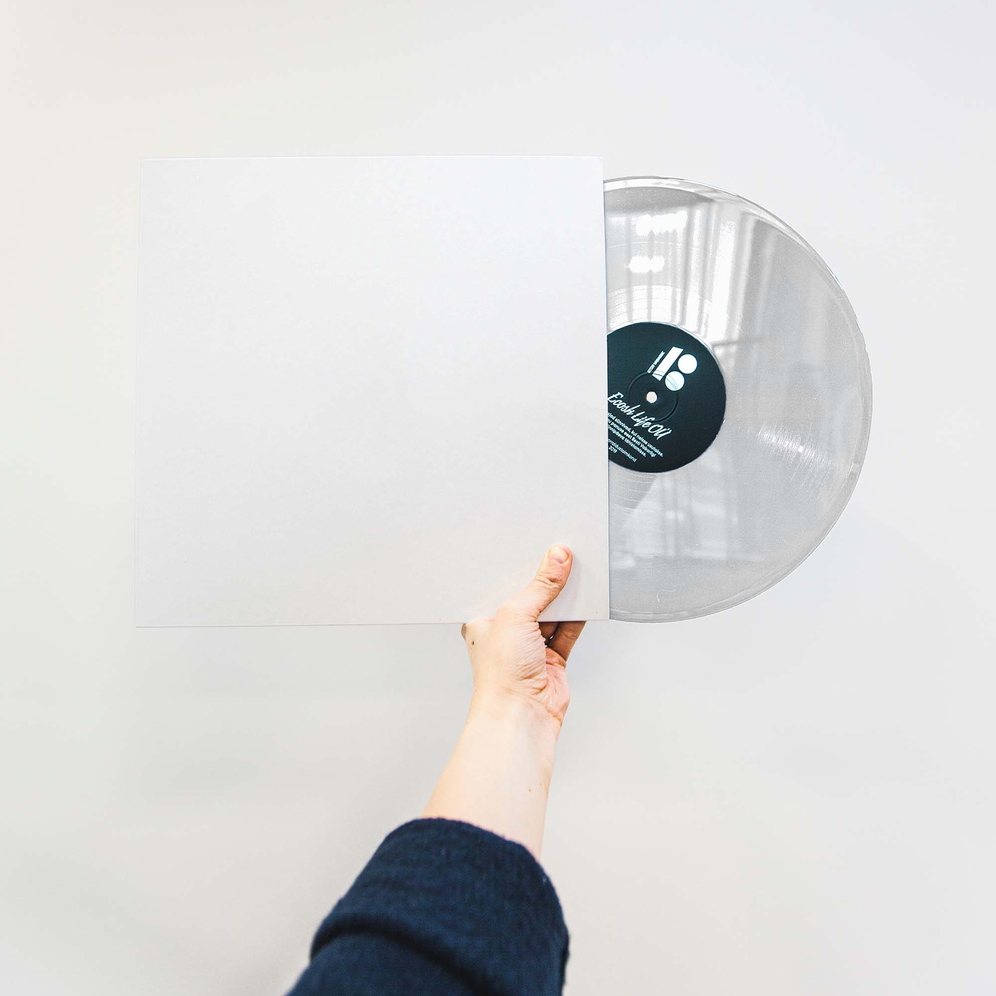 Vinyl Disc Mockup 2