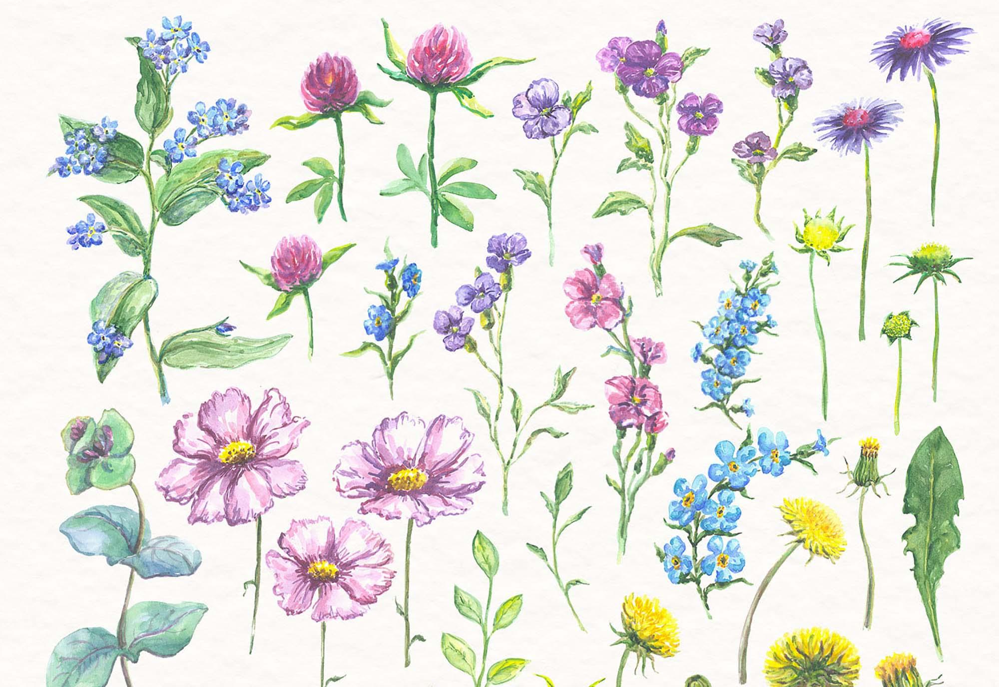 Watercolor Florals 1