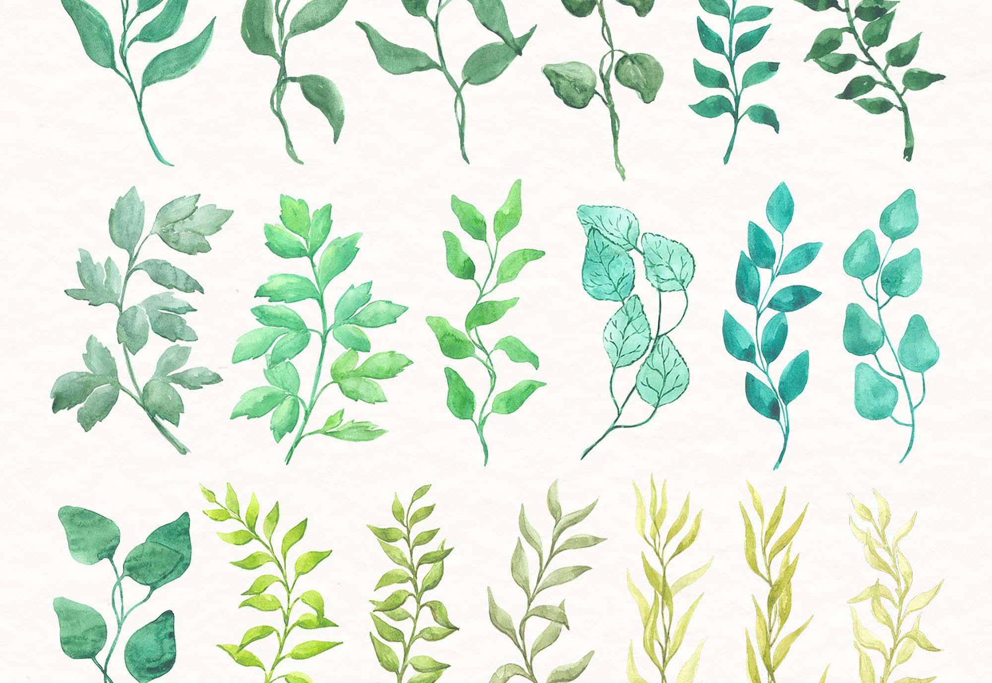 Watercolor Florals 3