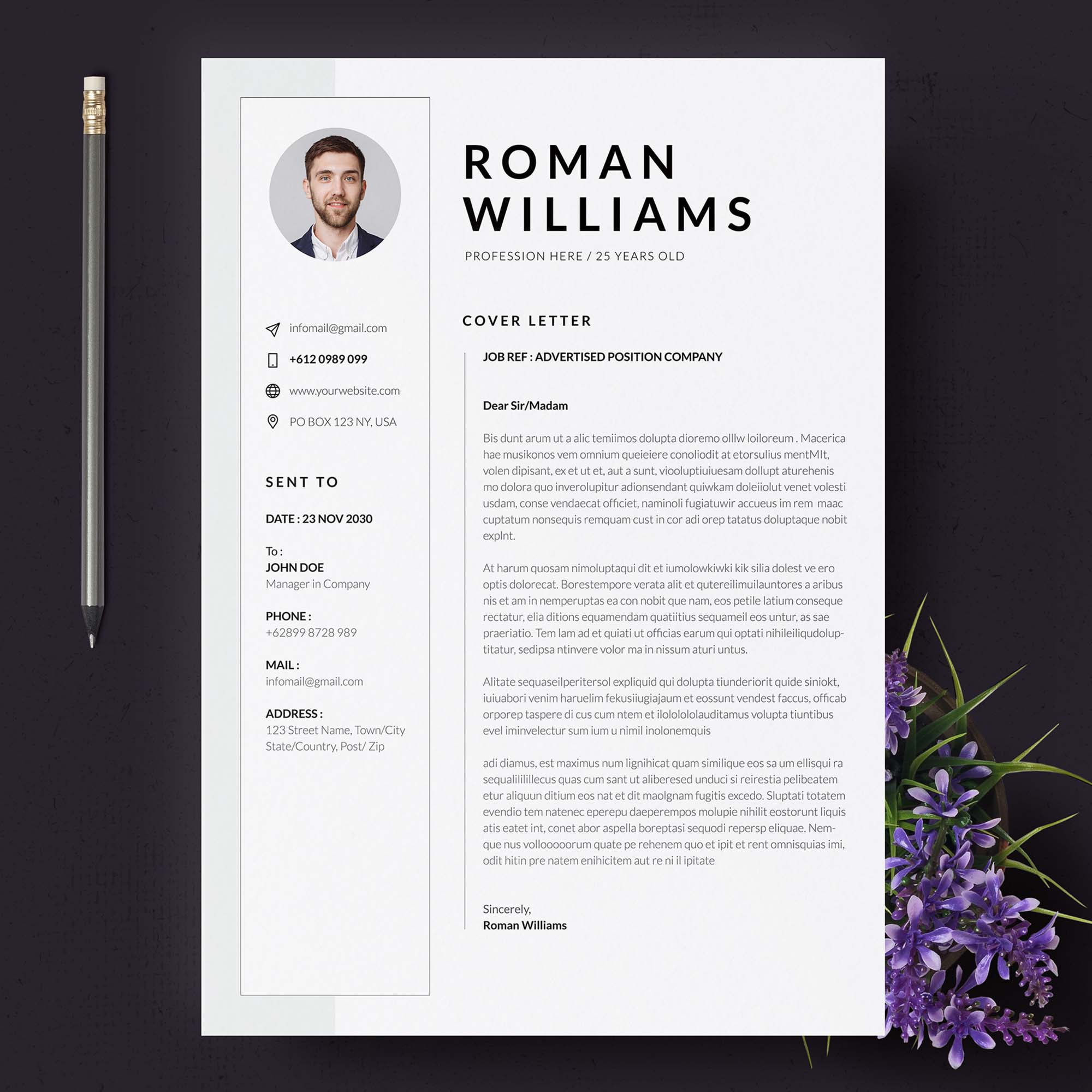 3 Page Resume Template 3