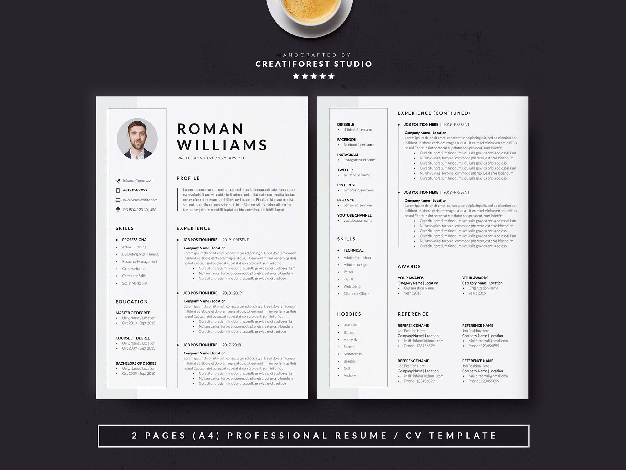 3 Page Resume Template 4