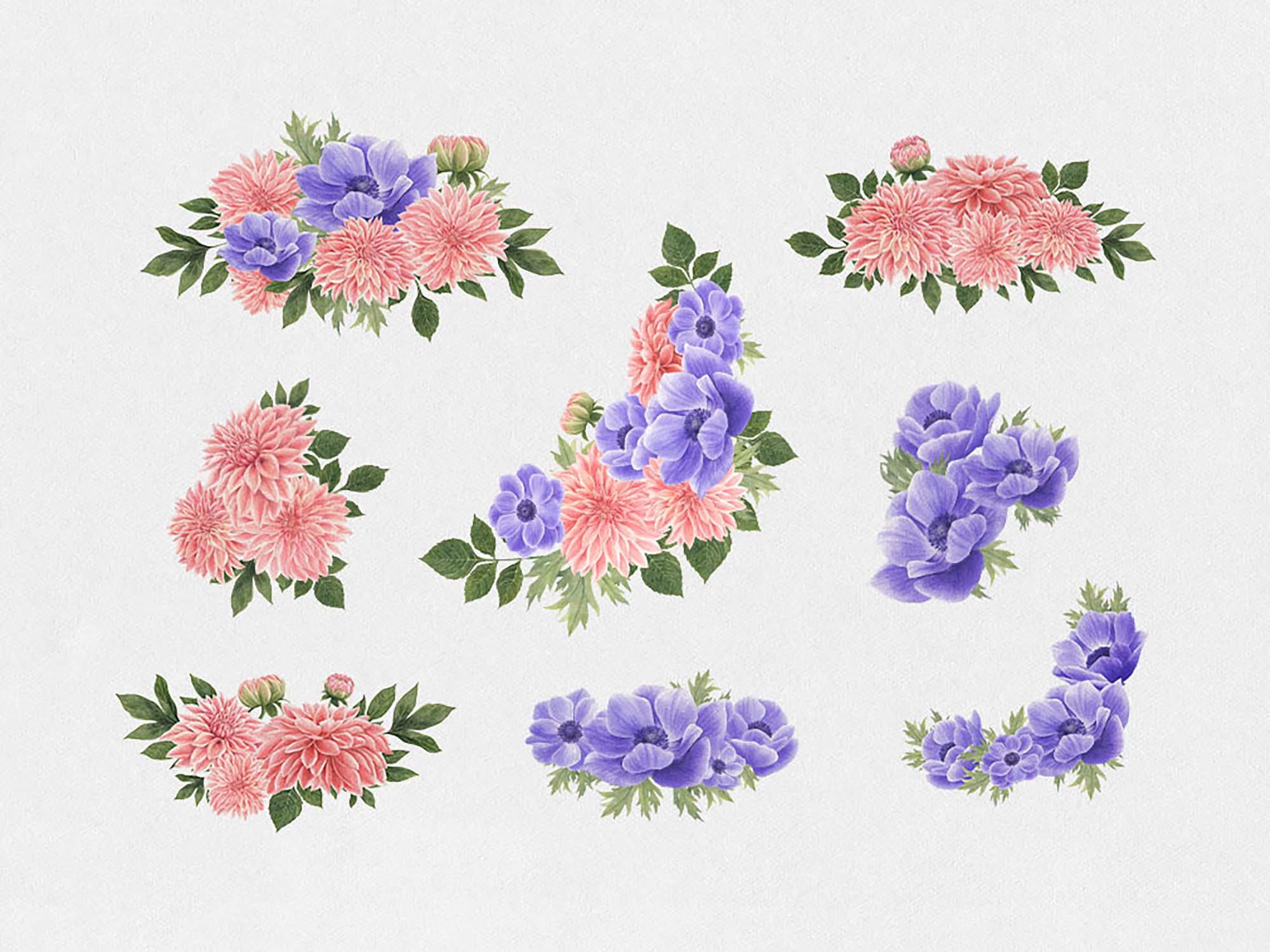 Anemone & Dahlia Flowers Clipart 3