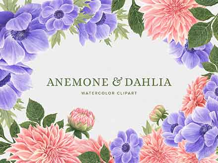 Anemone & Dahlia Flowers Clipart