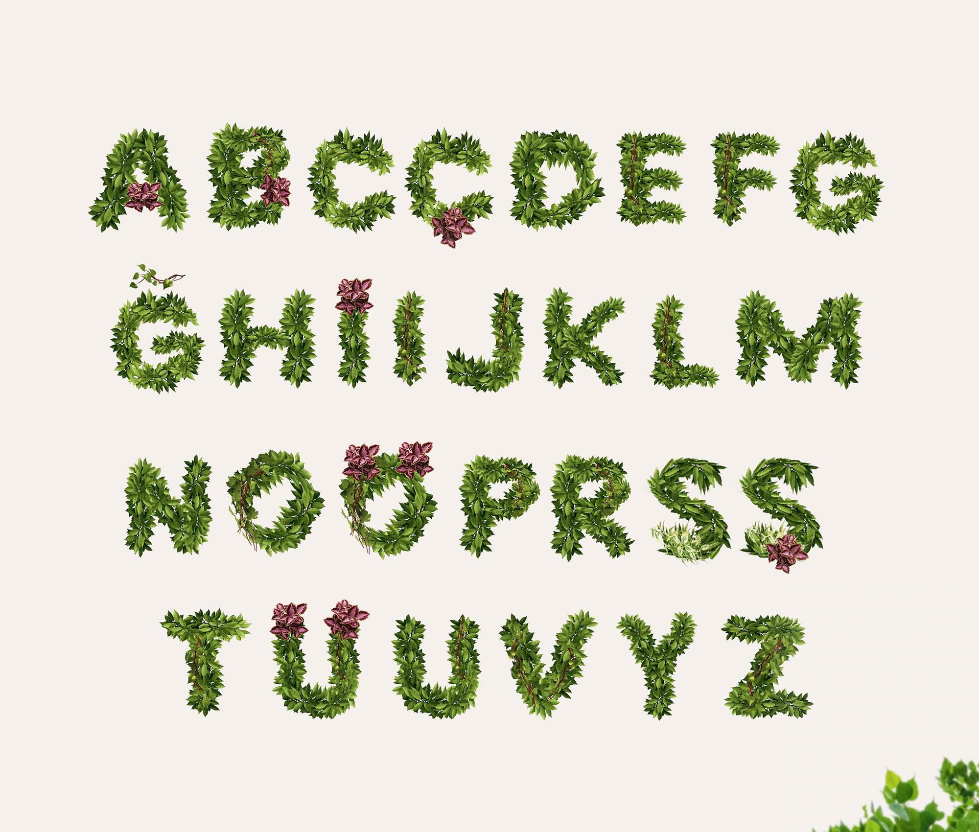 Bostan Typeface 2