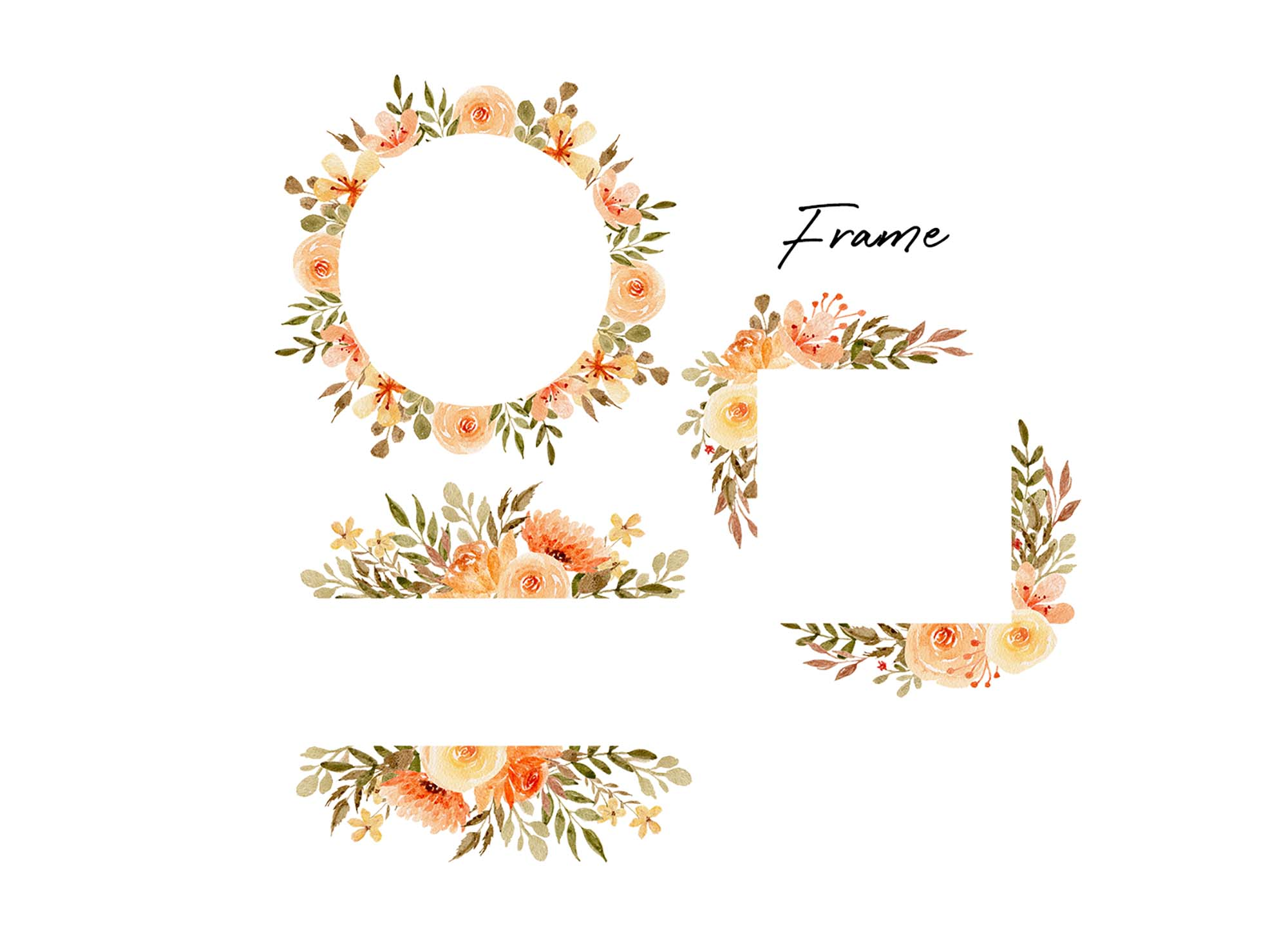 Delicate Orange Hand Painted Watercolor Clipart 4