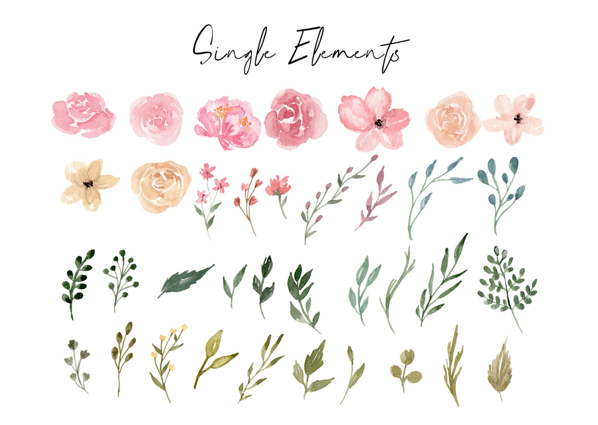 Dusty Blooms Watercolor Graphic Illustrations 6