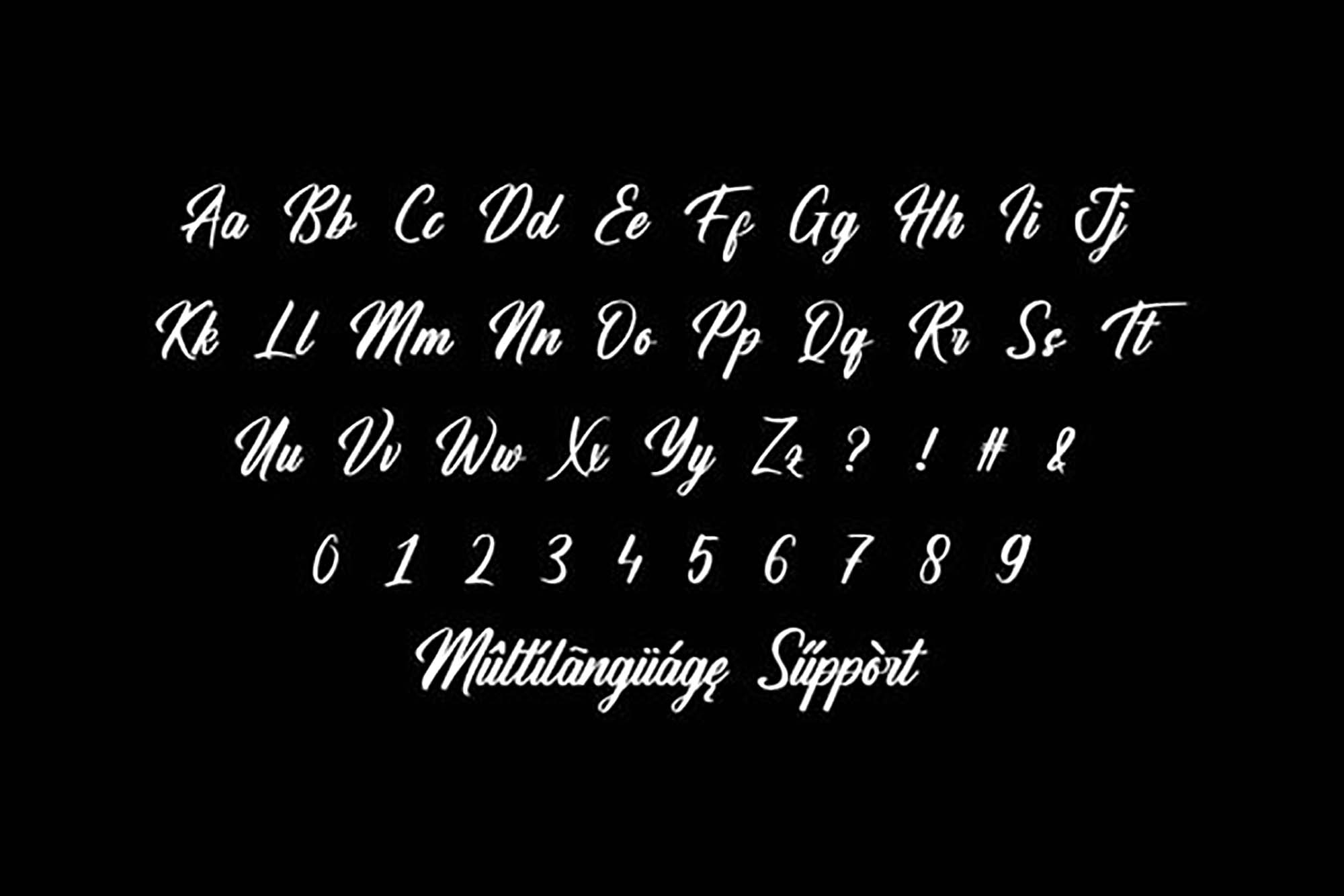 Hamsterly Script Font 2