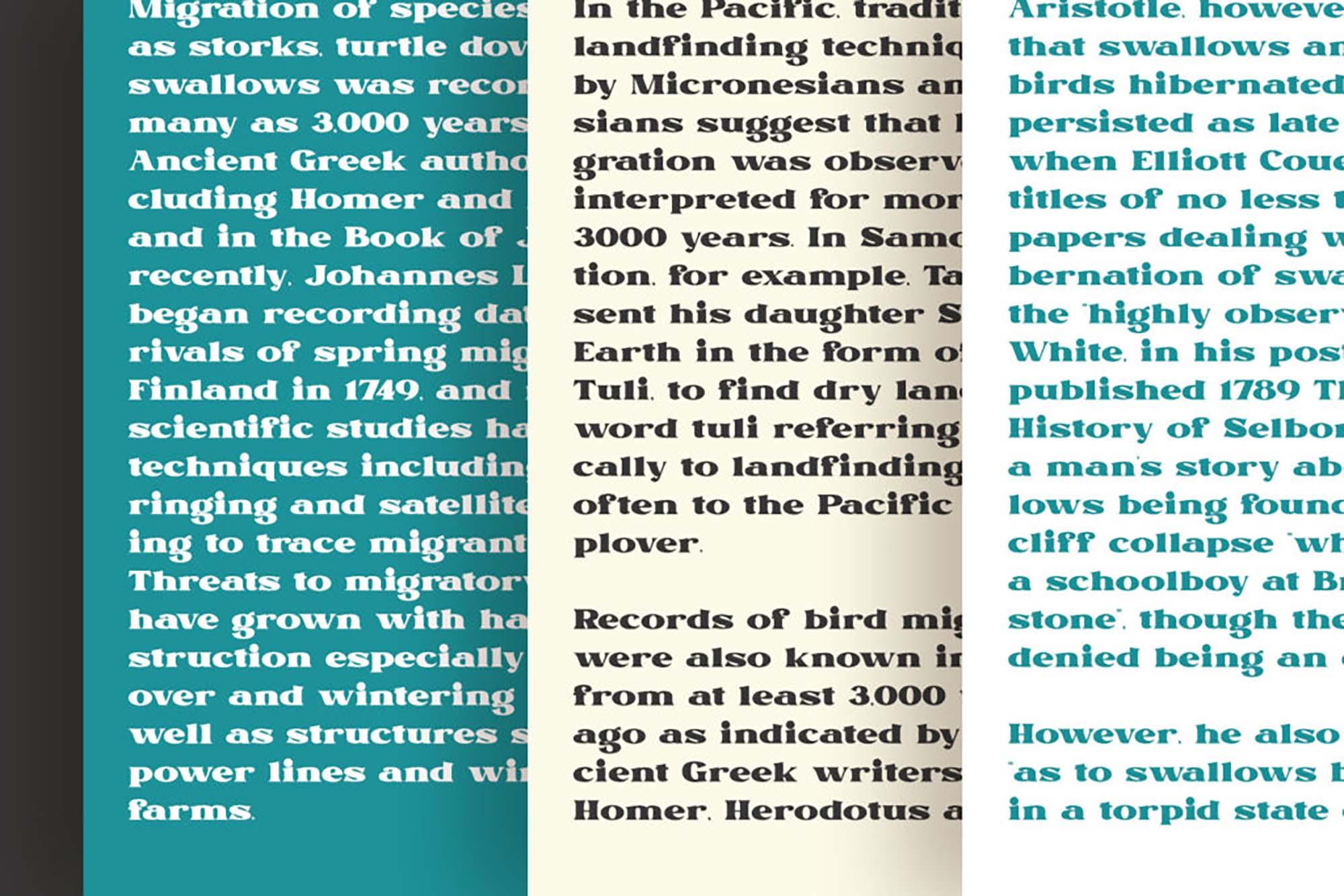Remind Serif Font 2