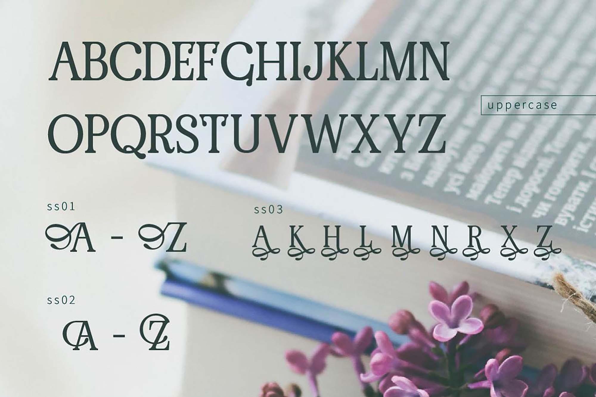 Renda Serif Font 4