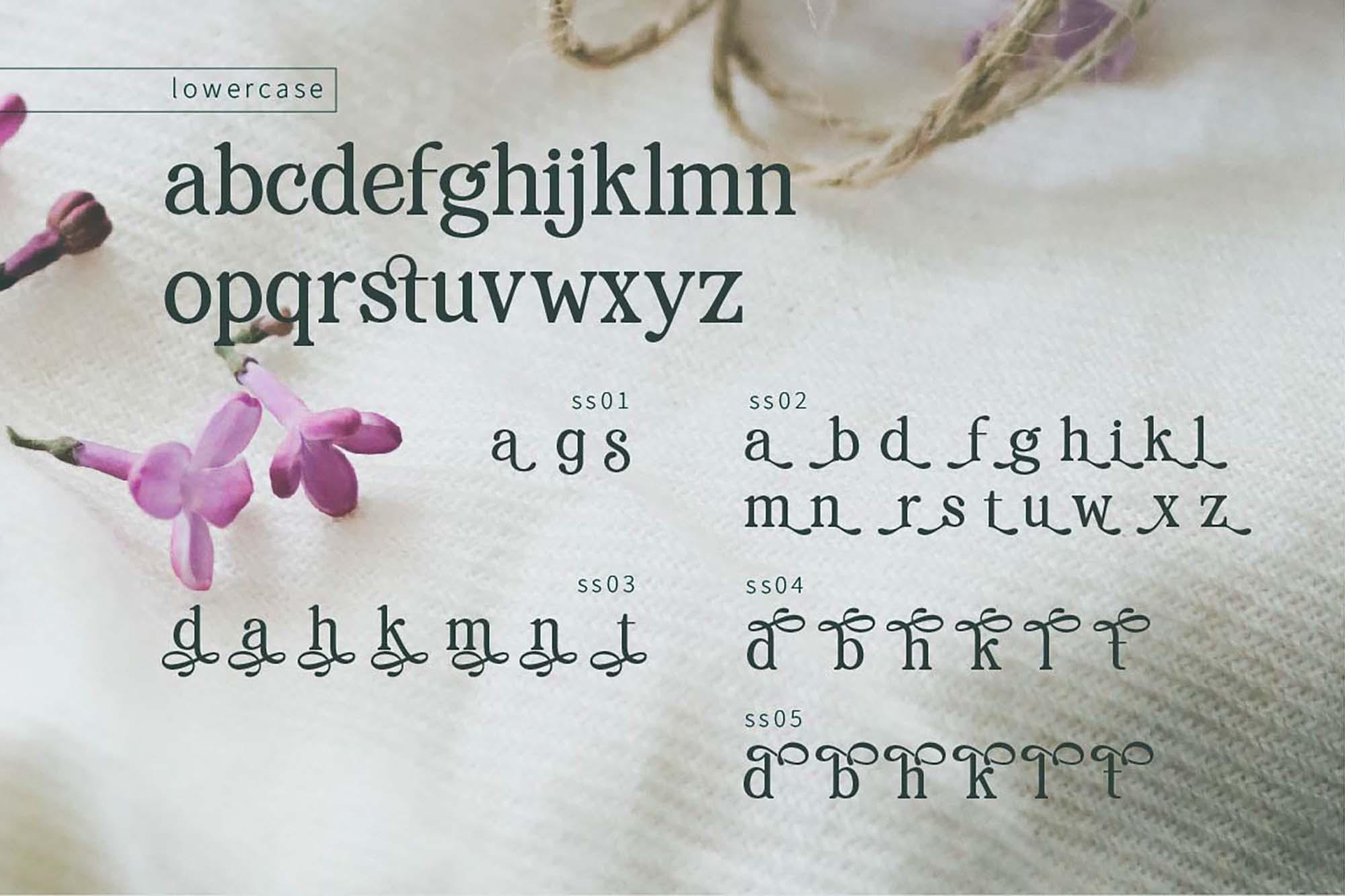 Renda Serif Font 5