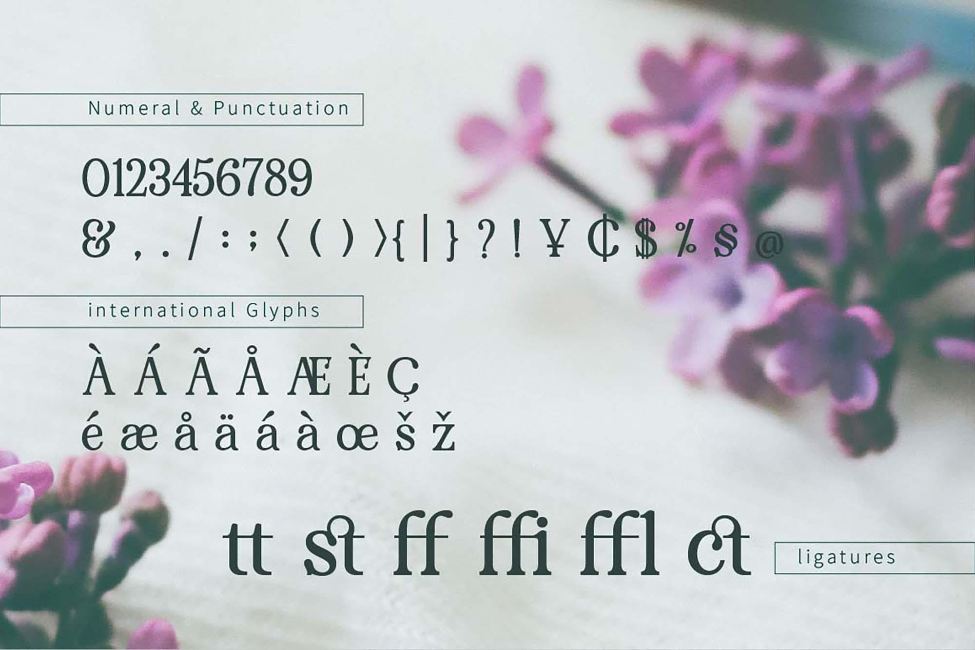 Renda Serif Font 6