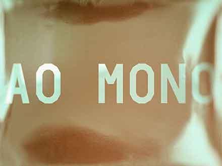 AO Mono Font