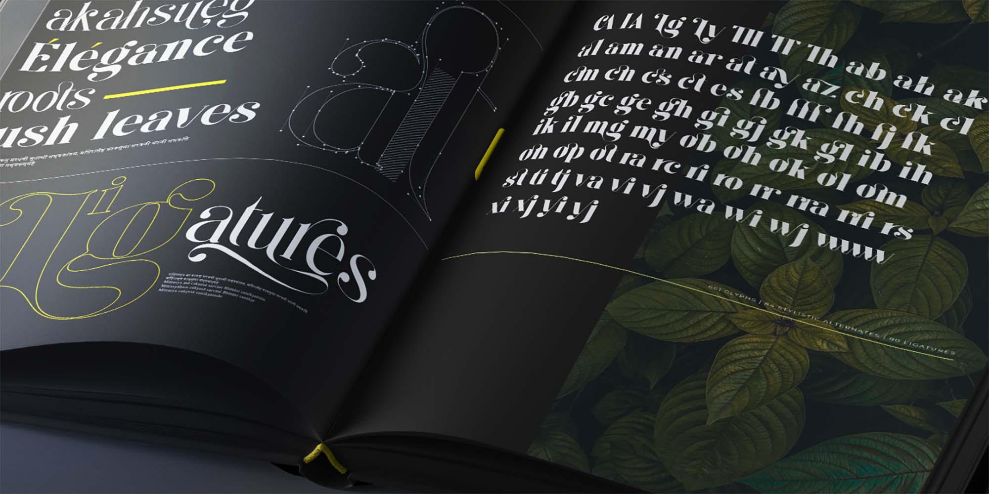 Kage Serif Font 8